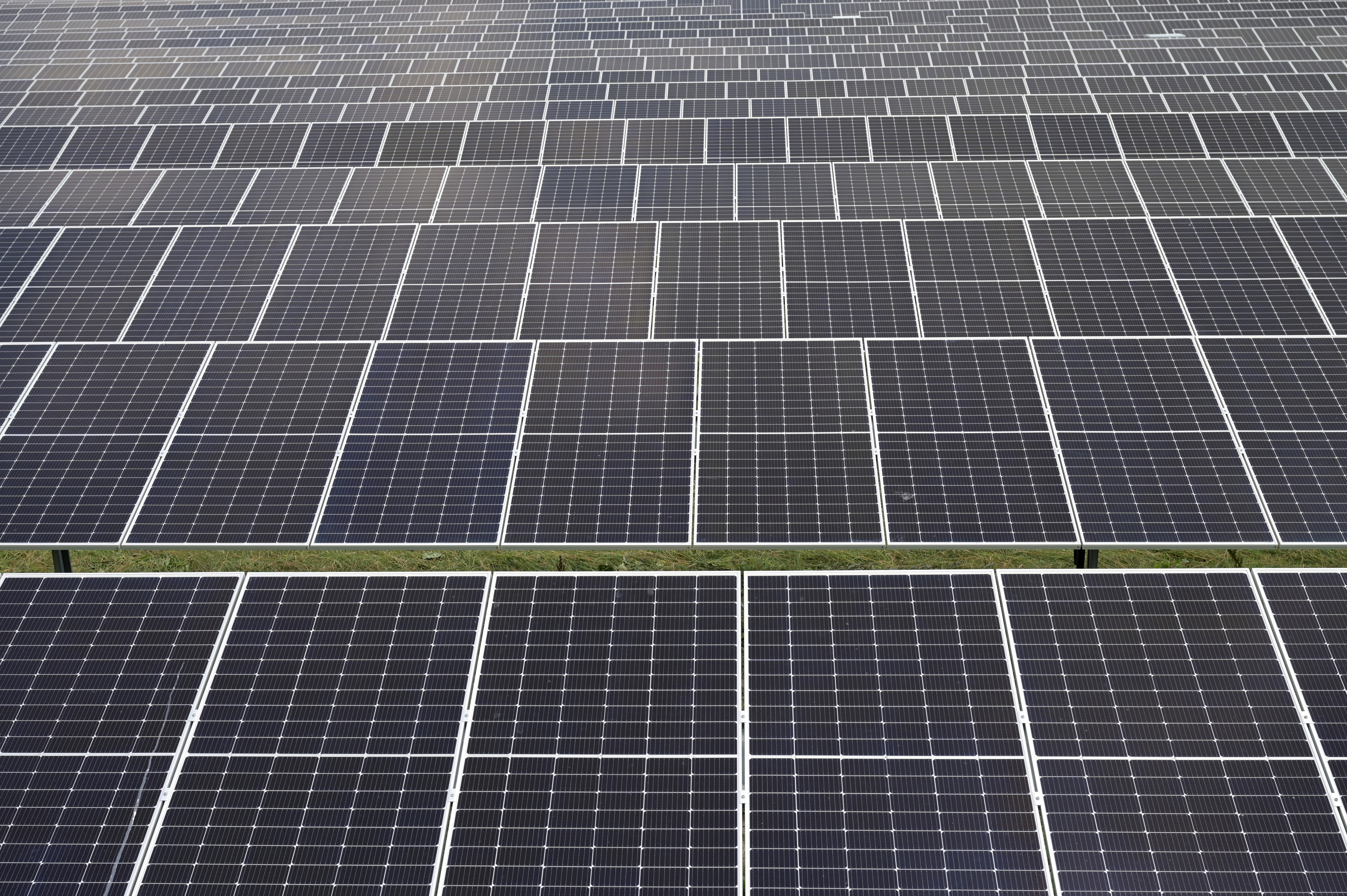 Solar panels are pictured in a solar park in Lottorf, Germany July 30, 2021. REUTERS/Fabian Bimmer/File Photo