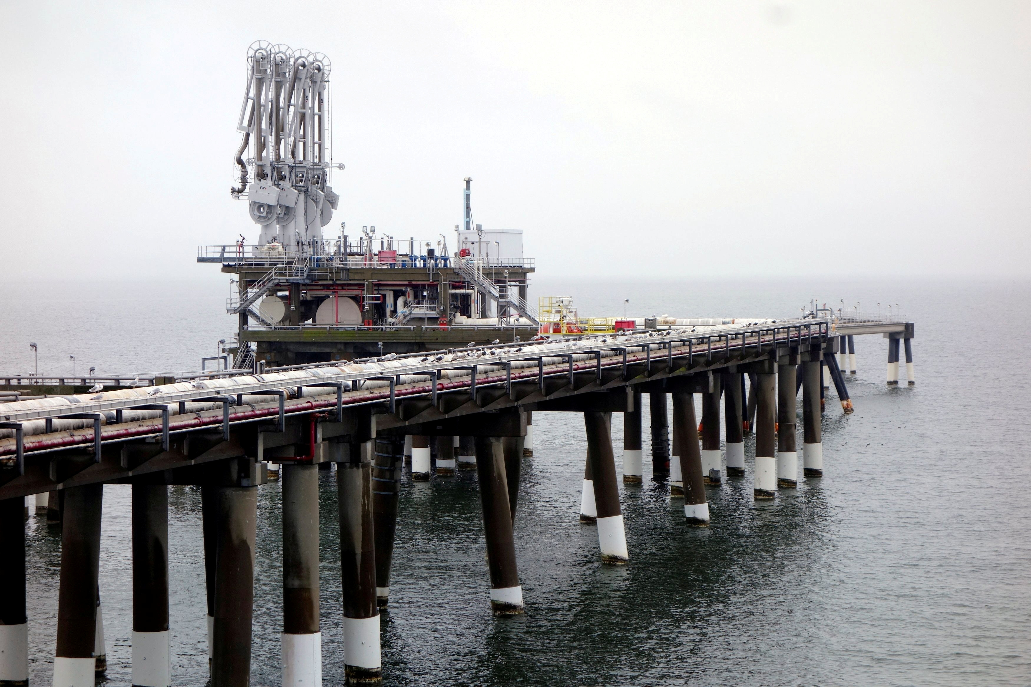 The pier at Dominion's Cove Point liquefied natural gas (LNG) plant on Maryland's Chesapeake Bay is seen in this picture taken February 5, 2014.   REUTERS/Timothy Gardner