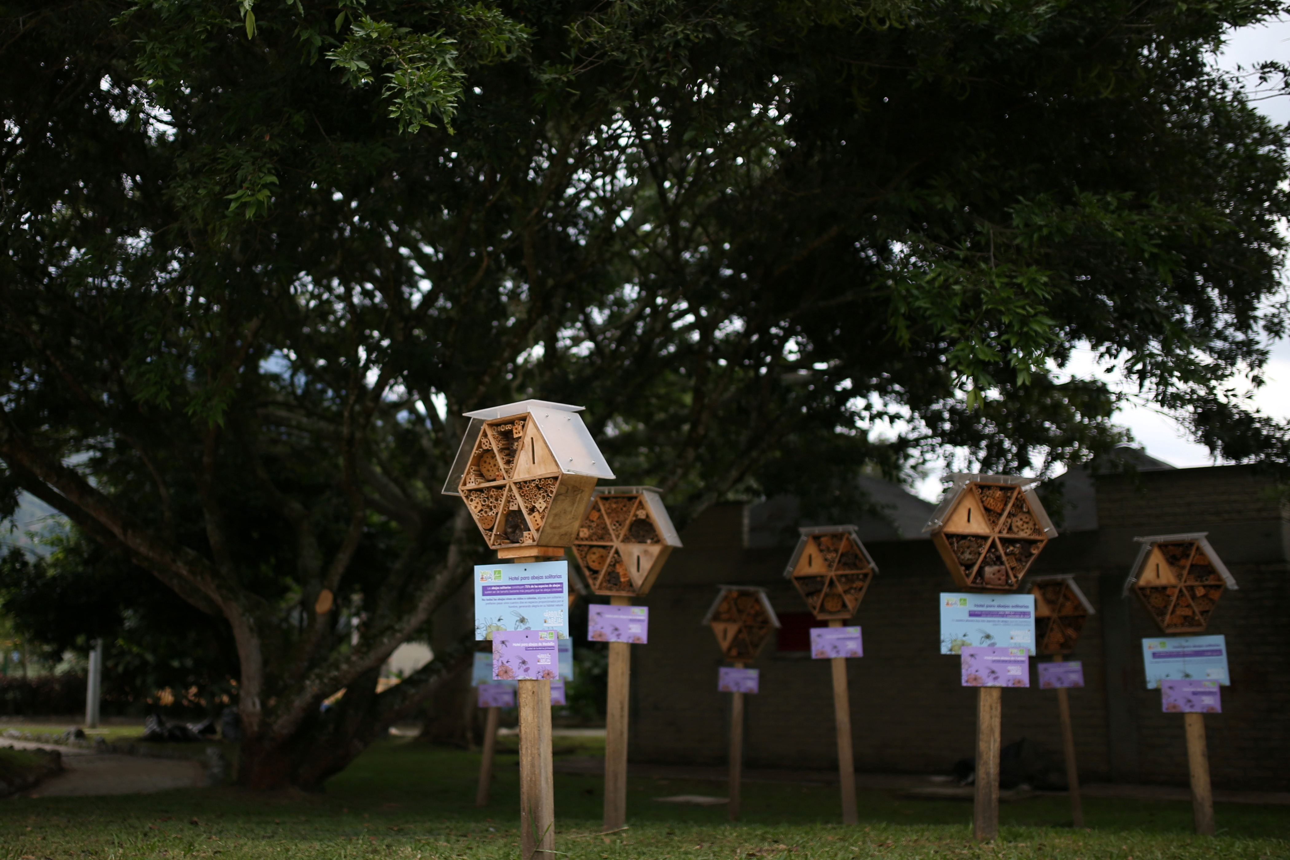 Wooden hotels for solitary bees made by the Metropolitan Area of the Aburra Valley (AMVA) are seen inside the Water Park in Barbosa, Colombia April 21, 2021.  REUTERS/Luisa Gonzalez