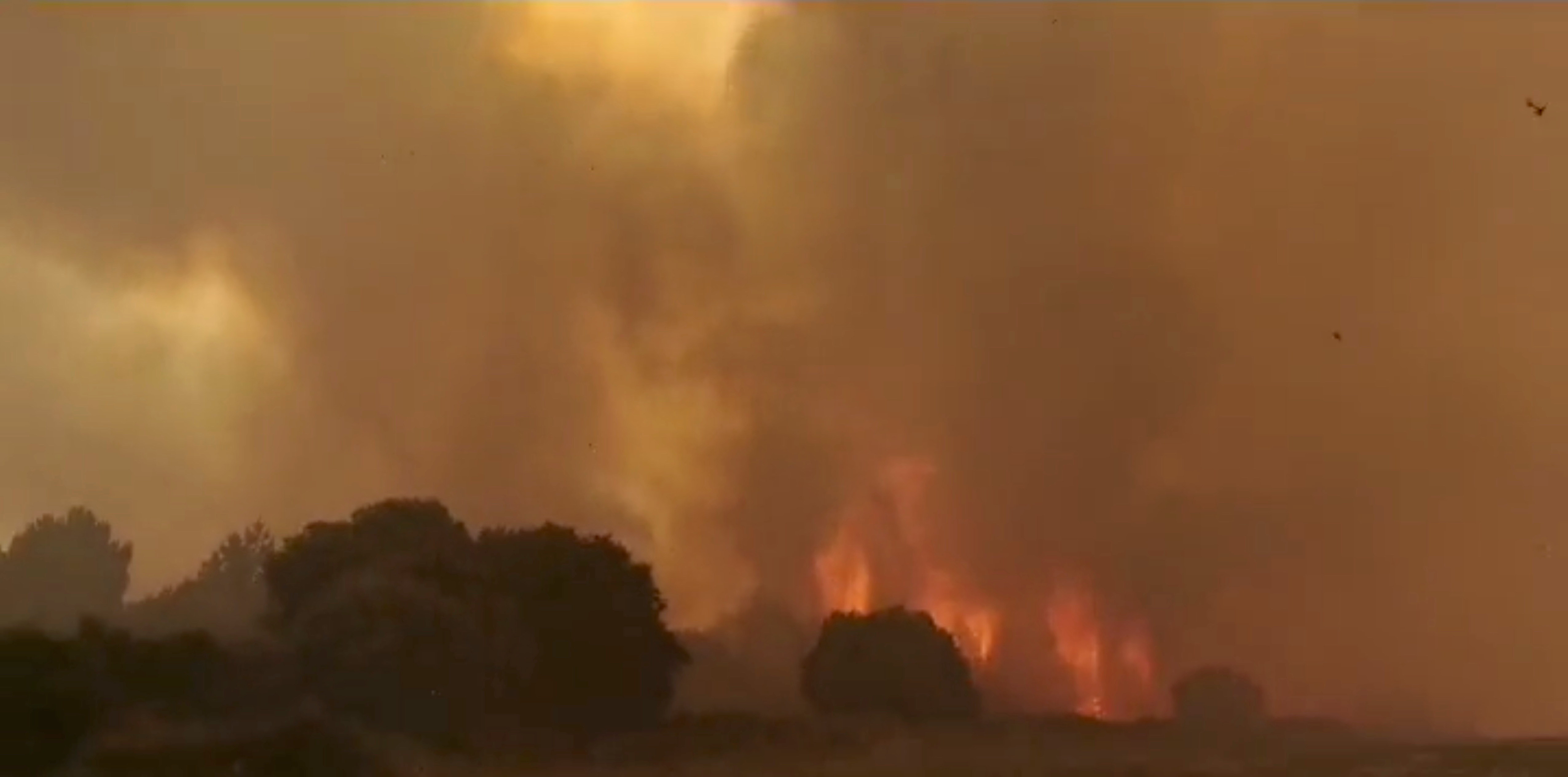 Smoke billows from a wildfire near Cuglieri, Sardinia, Italy July 25, 2021, in this screen grab obtained from a social media video. CRONACHE NUORESI via REUTERS
