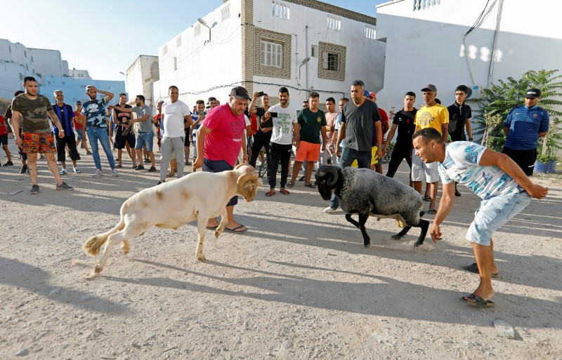People watch ram fighting in Bab Souika district, near the Old City of Tunis, Tunisia June 13, 2021. Picture taken June 13, 2021. REUTERS/Zoubeir Souissi