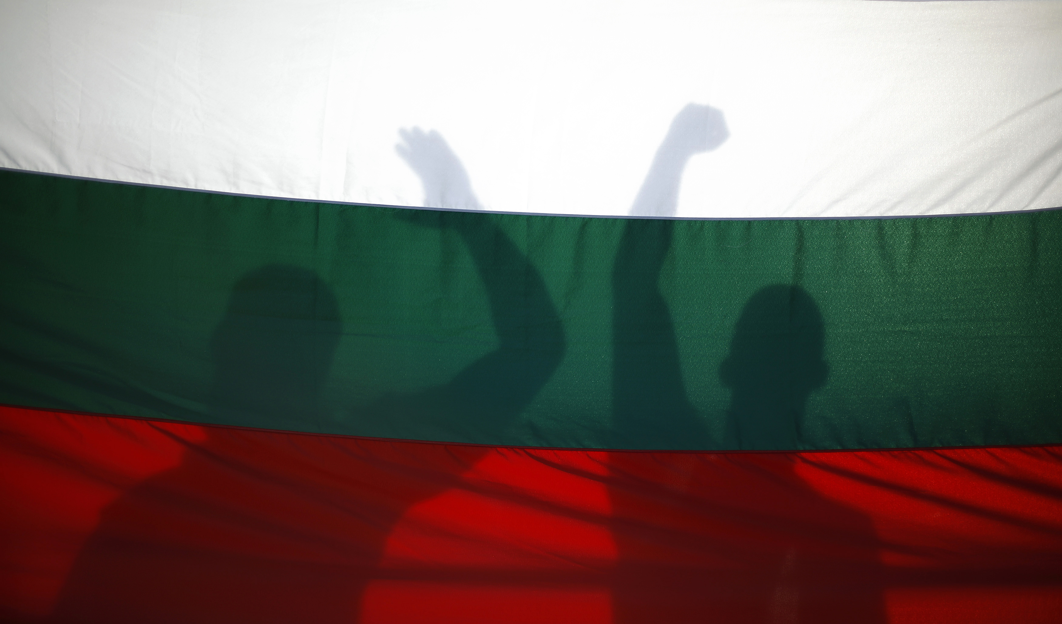 Protesters cast their shadows on a Bulgarian flag as they shout anti-government slogans during a demonstration in central Sofia June 19, 2013.    REUTERS/Stoyan Nenov