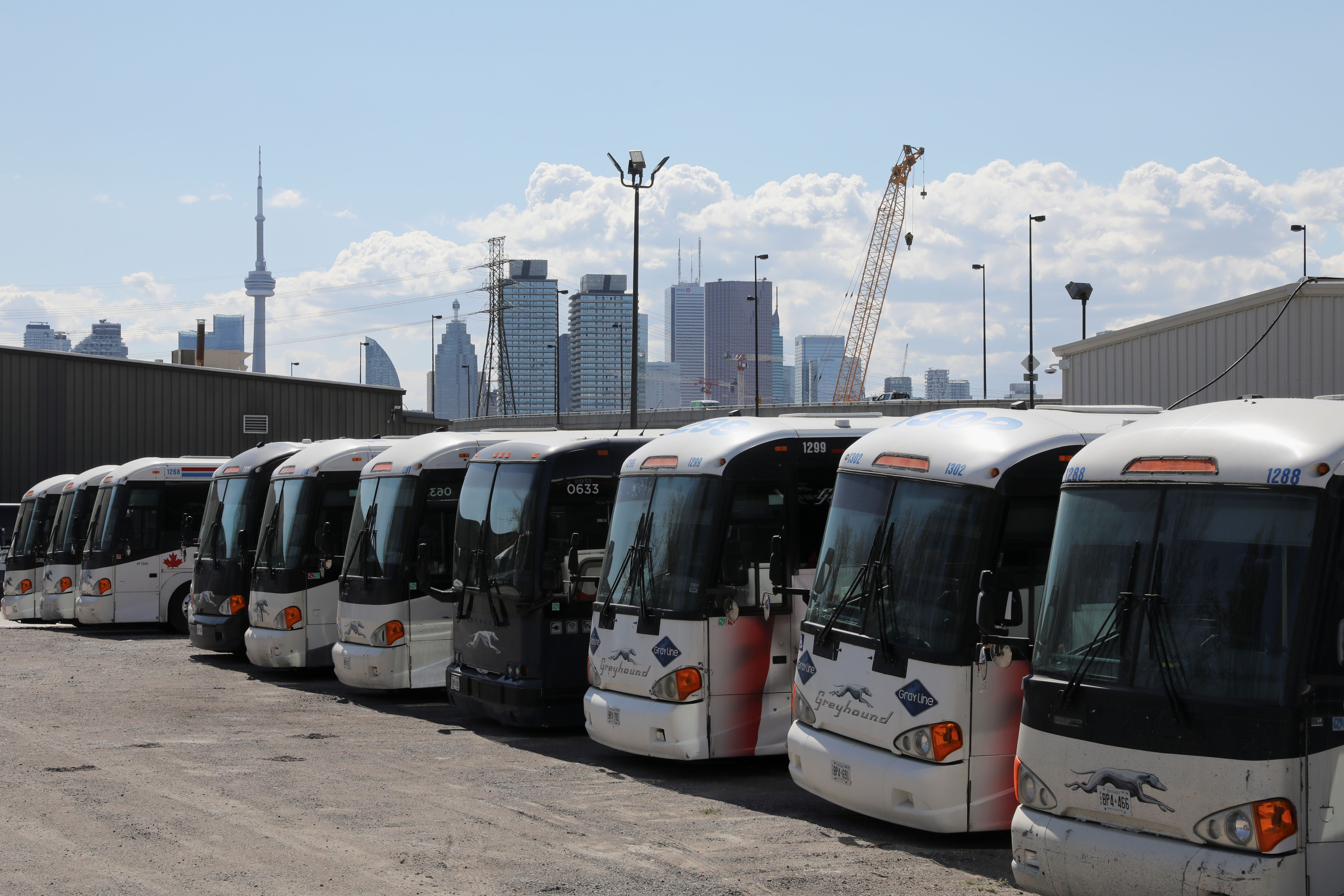Idle Greyhound buses are parked at a depot after the transportation company announced that it had permanently closed its service in Canada, in Toronto, Ontario, Canada May 13, 2021. REUTERS/Chris Helgren