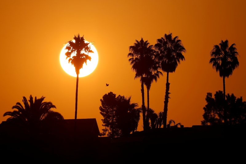 The morning sun rises over a neighborhood as a heatwave continues during the outbreak of the coronavirus disease (COVID-19) in Encinitas, California, U.S., August 19, 2020. REUTERS/Mike Blake/File Photo