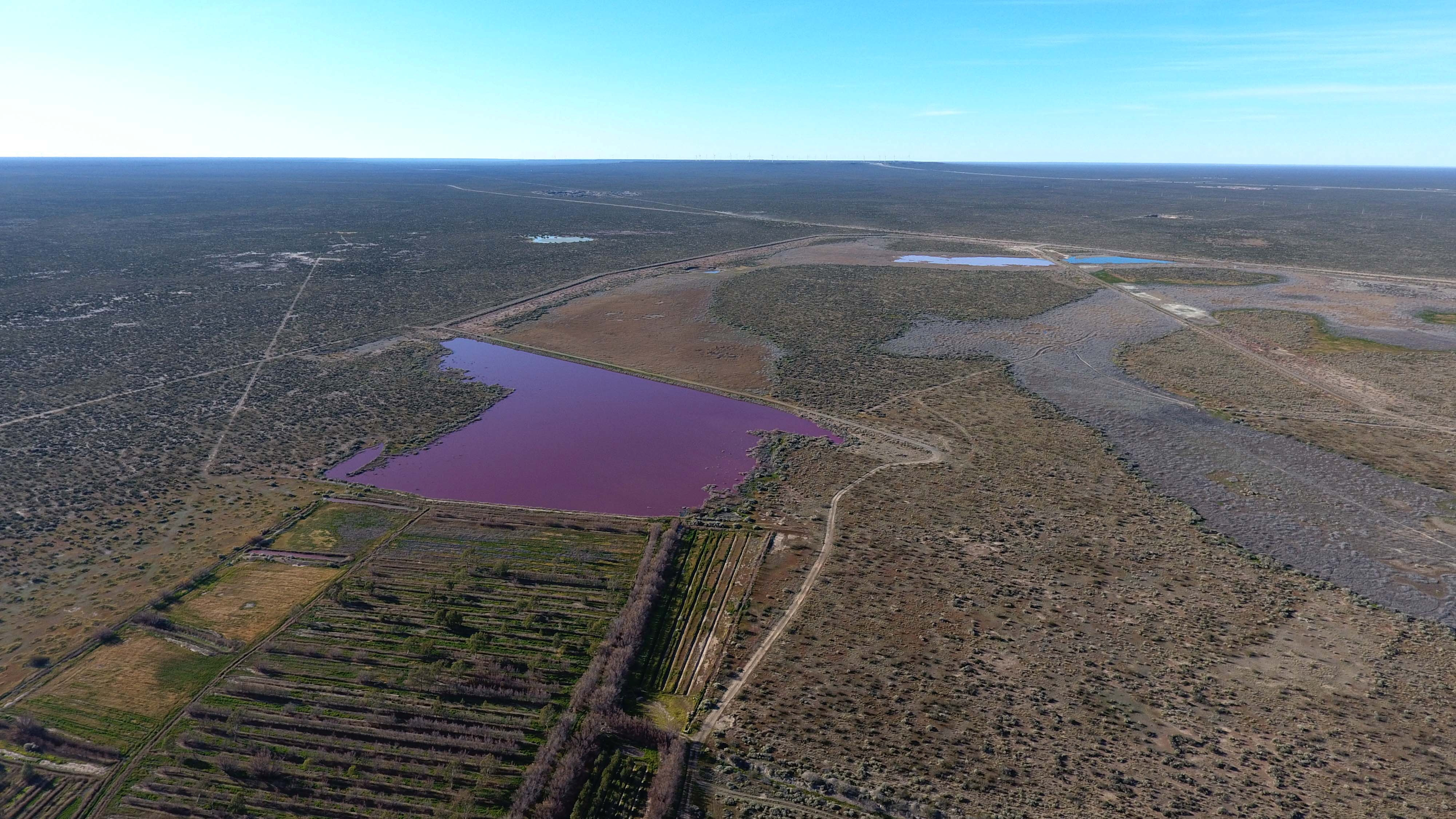 Aerial view of the Corfo lagoon, that turned pink due to chemical waste, in Trelew, Chubut, Argentina July 29, 2021. Picture taken July 29, 2021 with a drone. Daniel Feldman/Handout via REUTERS