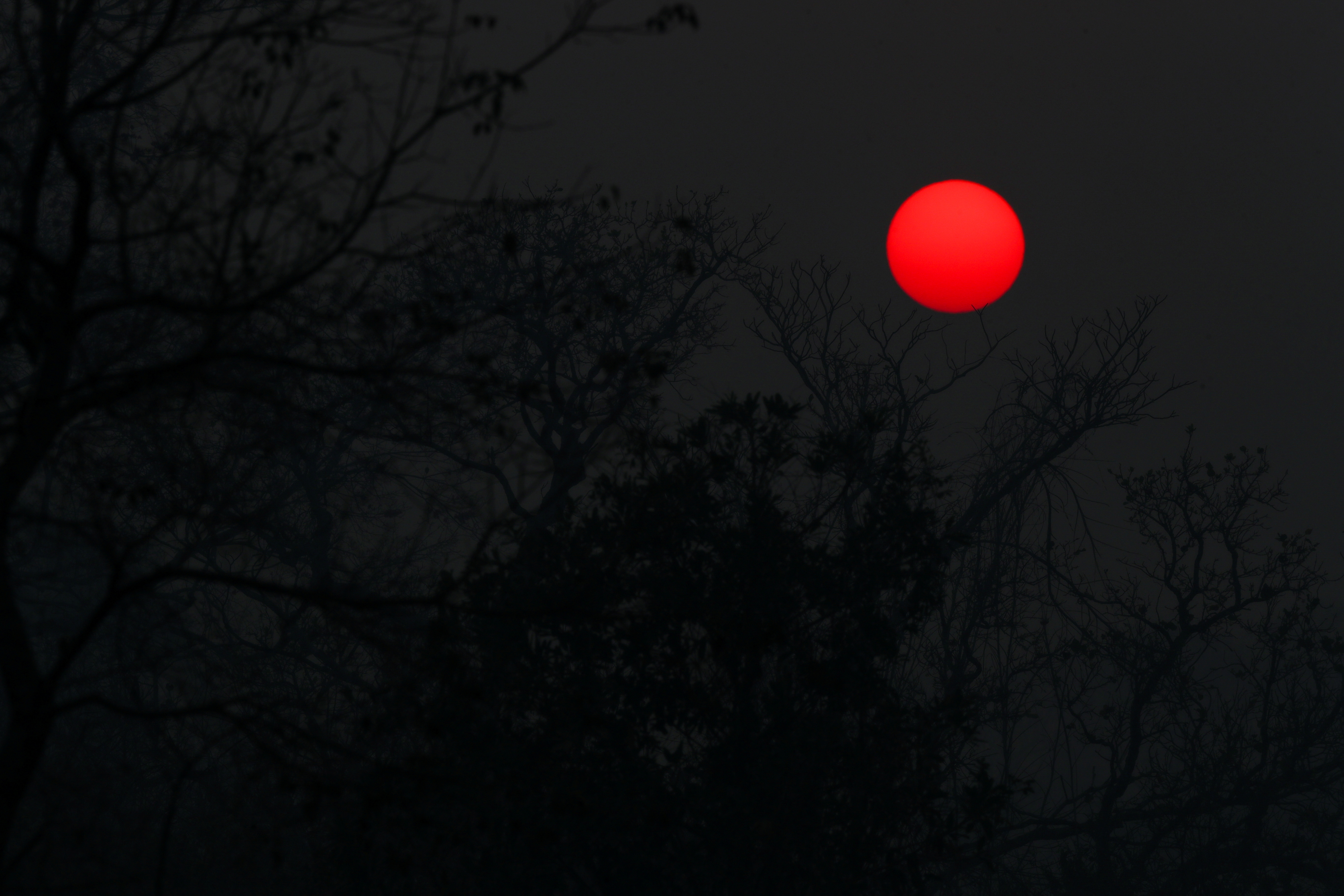 The sun rises above smoke from the burnt trees and vegetation in The Pantanal, the world's largest wetland, in Pocone, Mato Grosso state, Brazil, August 29, 2020. Picture taken August 29, 2020. REUTERS/Amanda Perobelli/File Photo