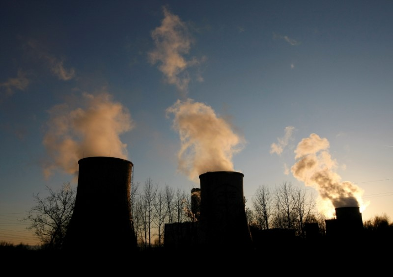 PGE Turow Power Station is seen in Bogatynia, south-western Poland, March 19, 2012. REUTERS/Kacper Pempel//File Photo