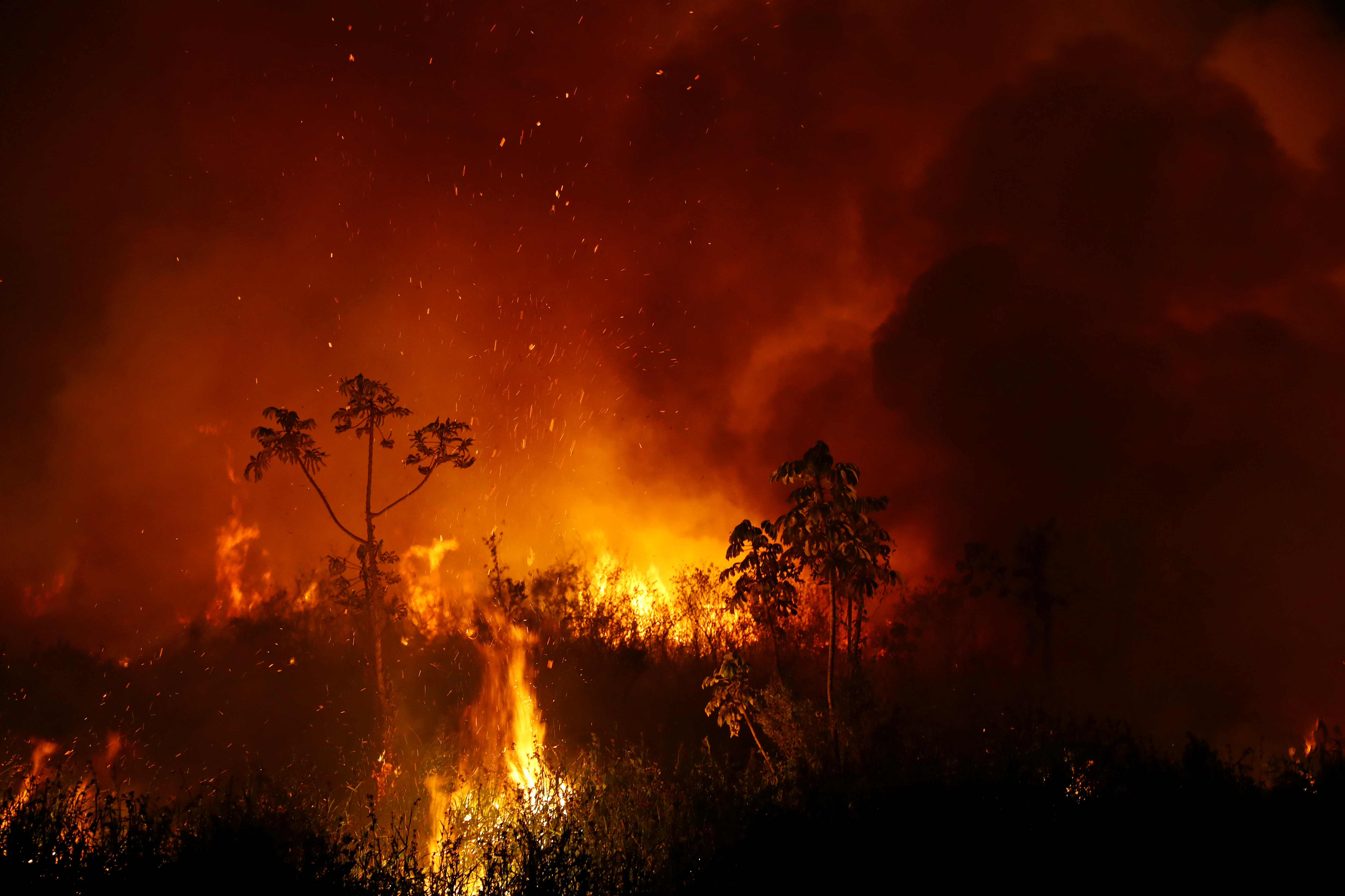 Smoke from a fire rises into the air as trees burn amongst vegetation in the Pantanal, the world's largest wetland, in Pocone, Mato Grosso state, Brazil, September 3, 2020. REUTERS/Amanda Perobelli