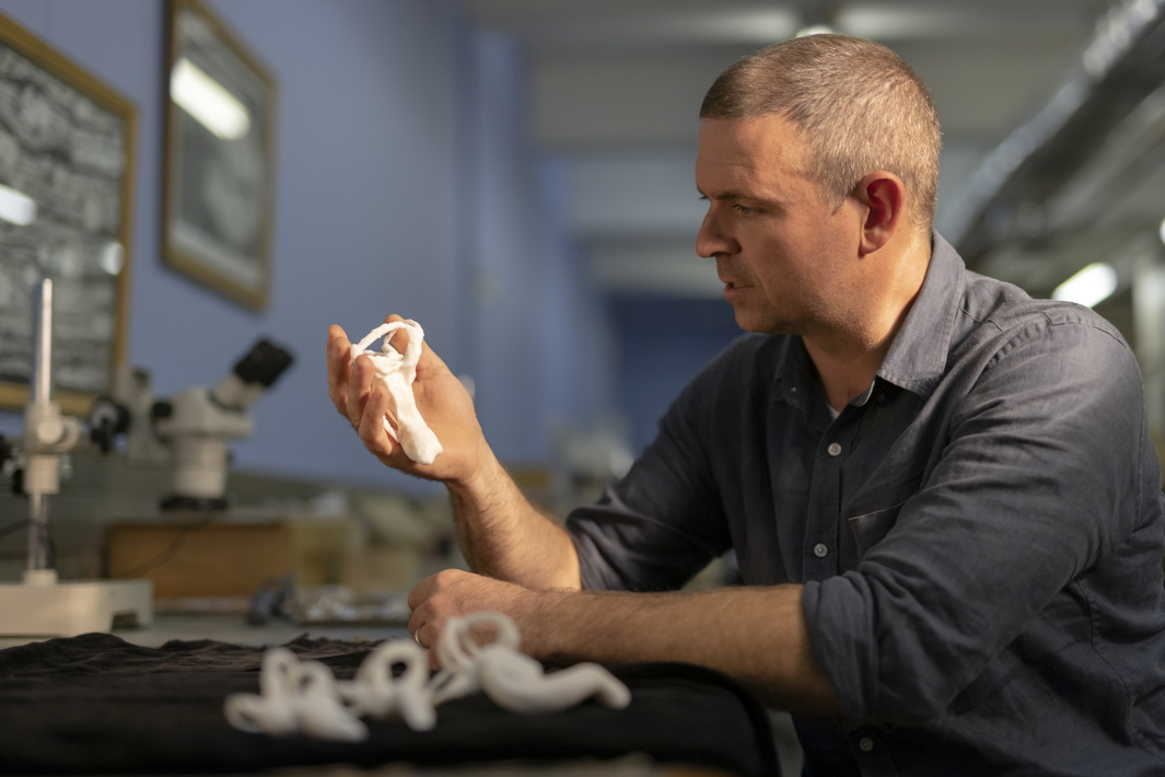 Professor Jonah Choiniere of the University of the Witwatersrand in Johannesburg, South Africa, is seen holding a 3D printed model of the lagena, an inner-ear structure, of the small bird-like dinosaur Shuvuuia deserti, in this undated handout photograph. Shivan Parusnath, University of the Witwatersrand/Handout via REUTERS