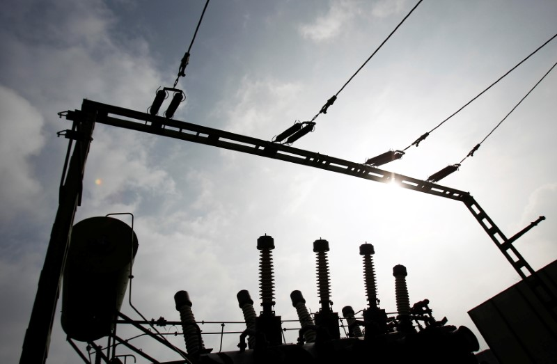 Part of a transformer substation hosted by 50Hertz Transmission Company is pictured  in Neuenhagen, March 6, 2014. REUTERS/Tobias Schwarz