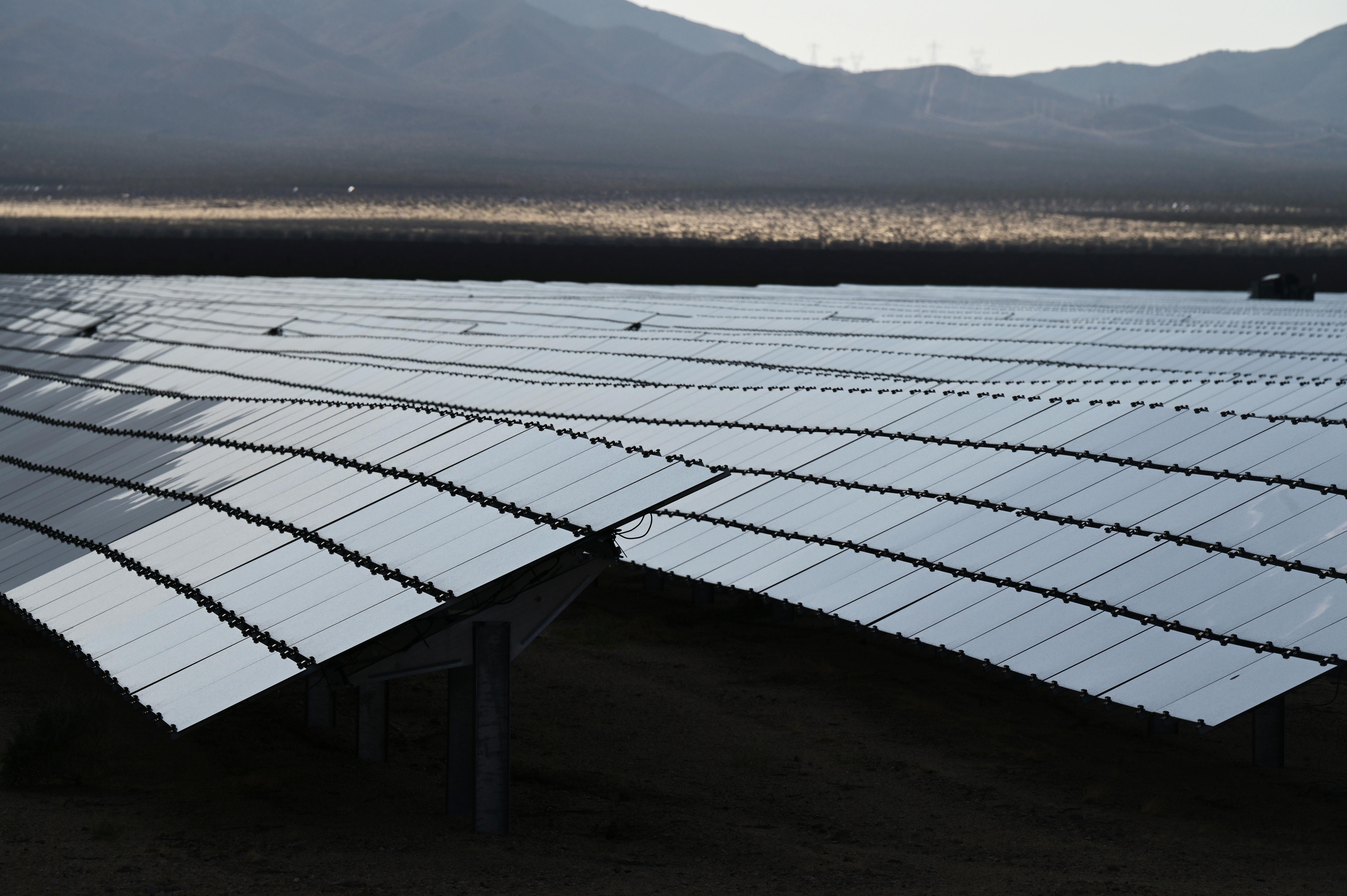 Gwelir paneli solar ym mhrosiect Desert Stateline ger Nipton, California, UD Awst 16, 2021. REUTERS / Bridget Bennett