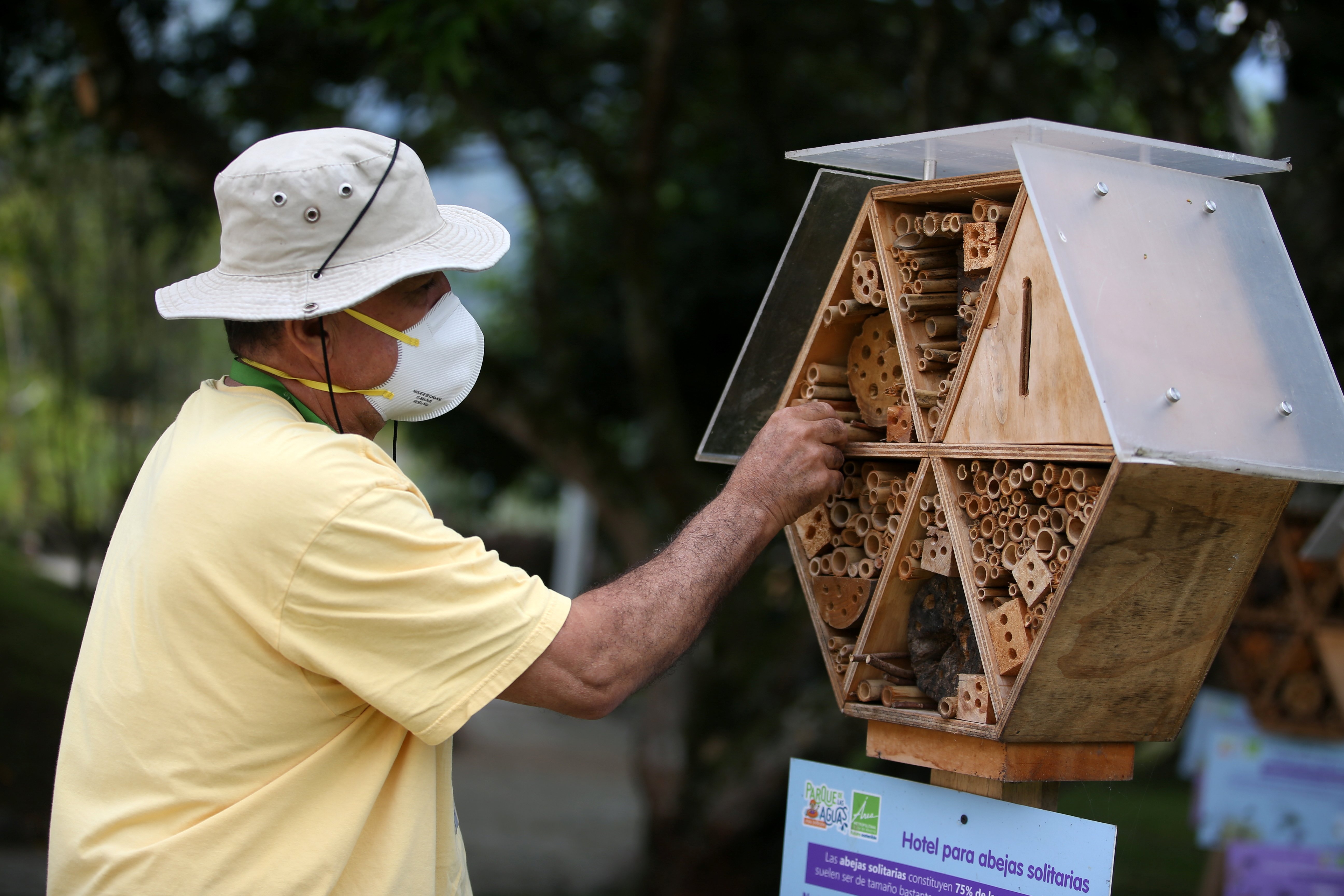 Hector Ivan Valencia, an assistant for the local authority's risk management unit, cleans the structure of a wooden hotel for solitary bees made by the Metropolitan Area of the Aburra Valley (AMVA) in Barbosa, Colombia April 21, 2021. REUTERS/Luisa Gonzalez