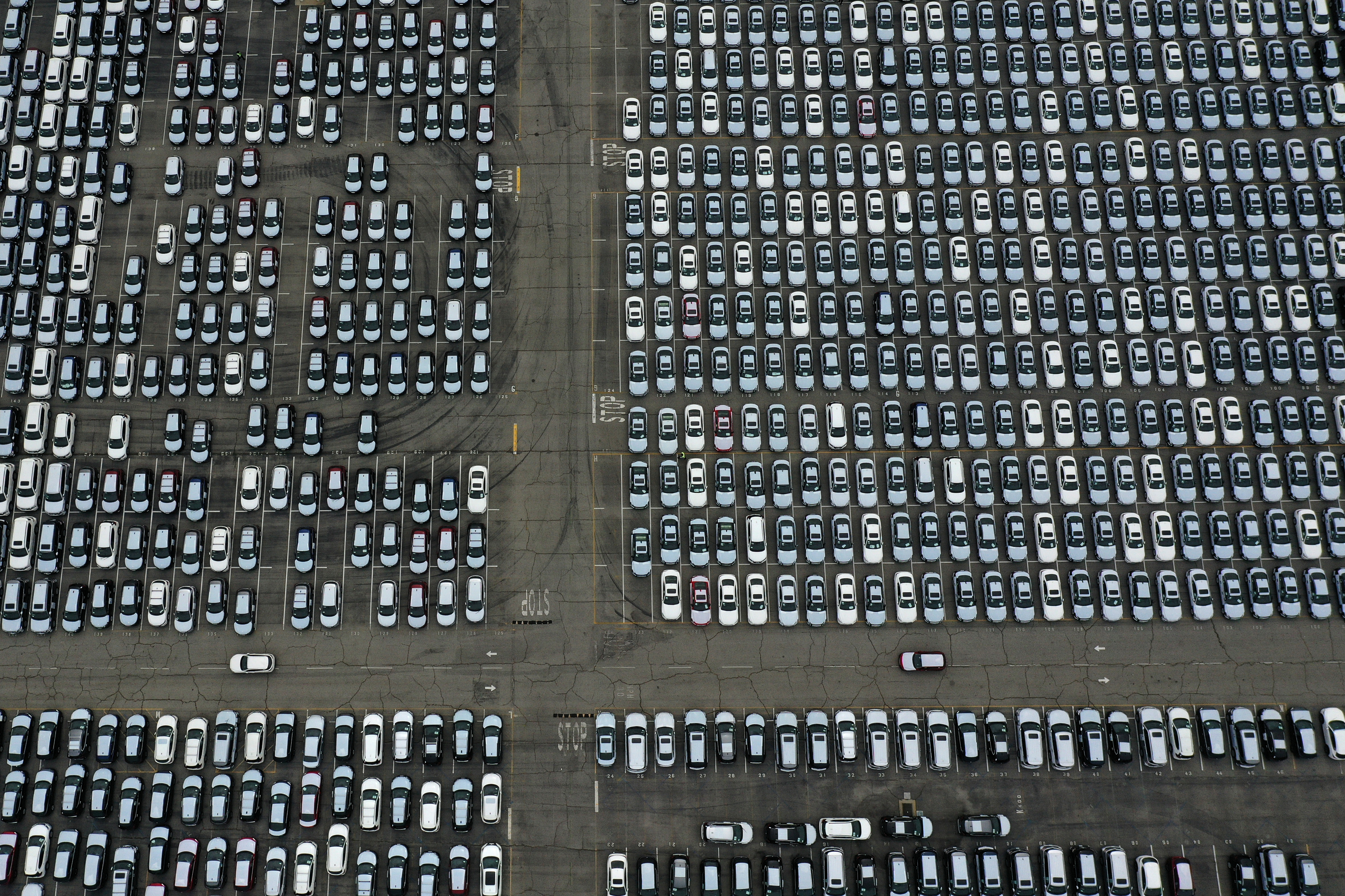 New cars are seen lined up next to the dock as the global outbreak of the coronavirus disease (COVID-19) continues, at the Port of Los Angeles, California, U.S., April 29, 2020.  REUTERS/Lucy Nicholson