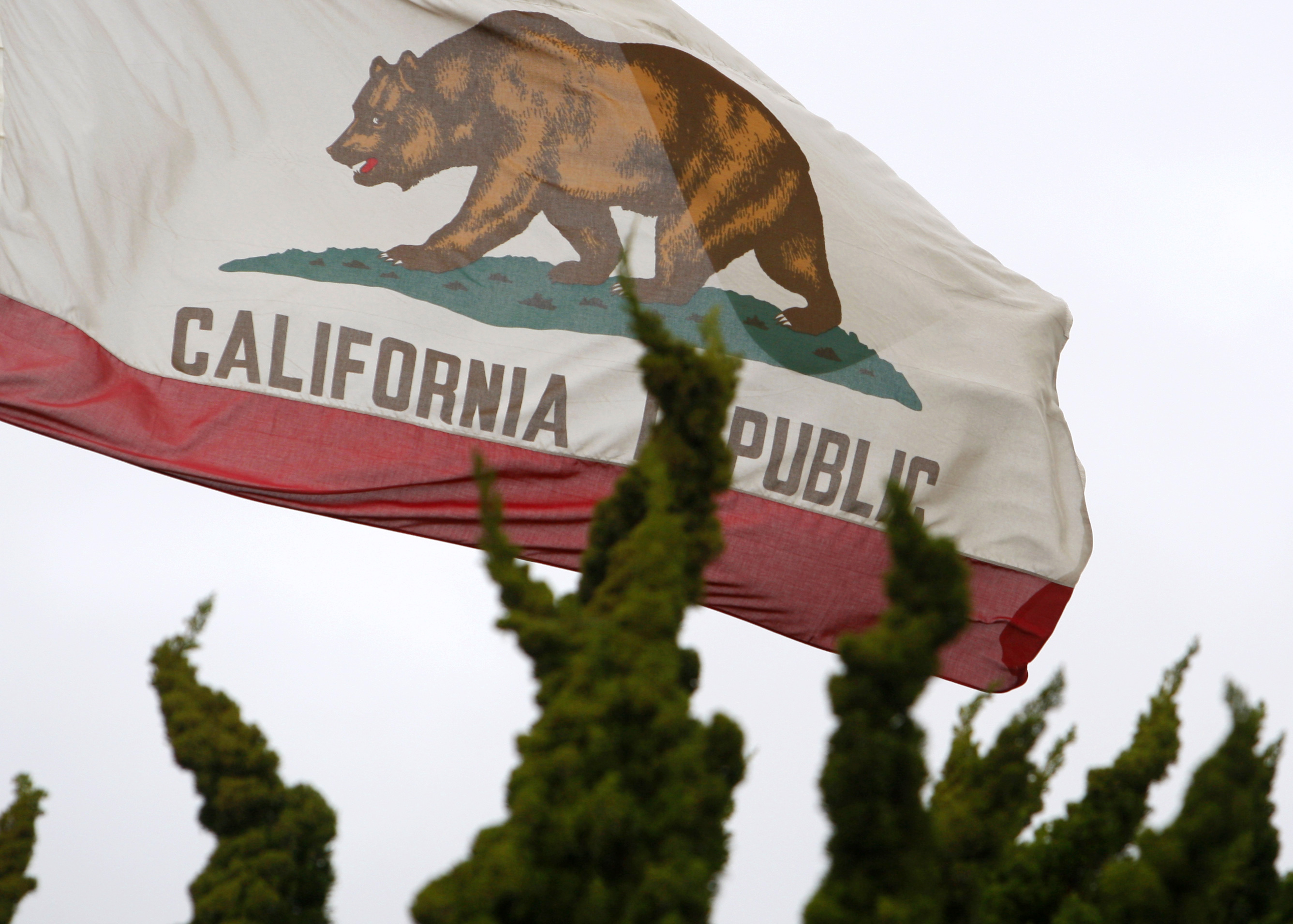 The California flag flies above City Hall in Santa Monica, California.  REUTERS/Lucy Nicholson