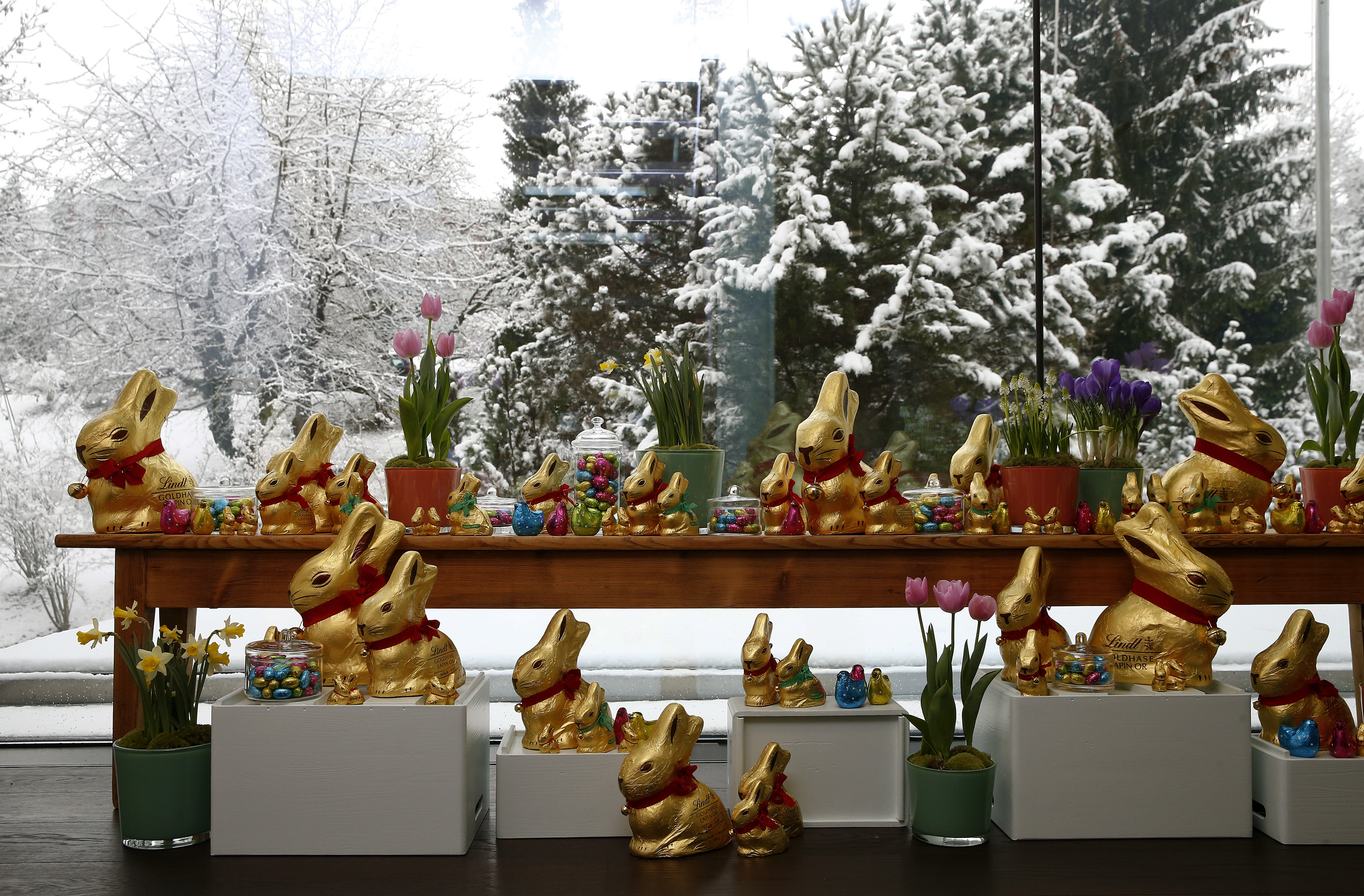Lindt 'Goldhase' chocolate bunnies of Swiss chocolatier Lindt & Spruengli. REUTERS/Arnd Wiegmann