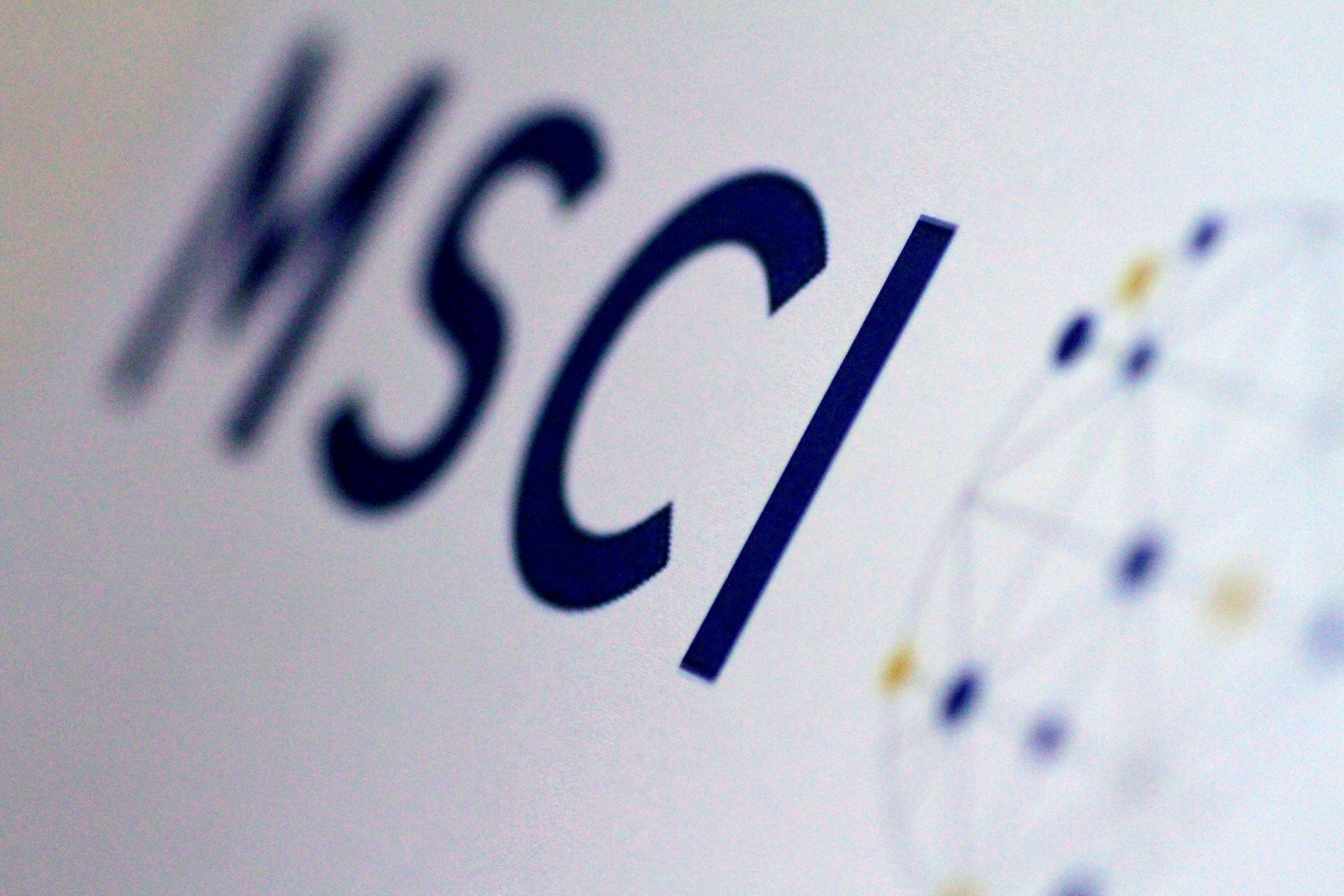 The MSCI logo is seen in this June 20, 2017 illustration photo.      REUTERS/Thomas White/Illustration/File Photo