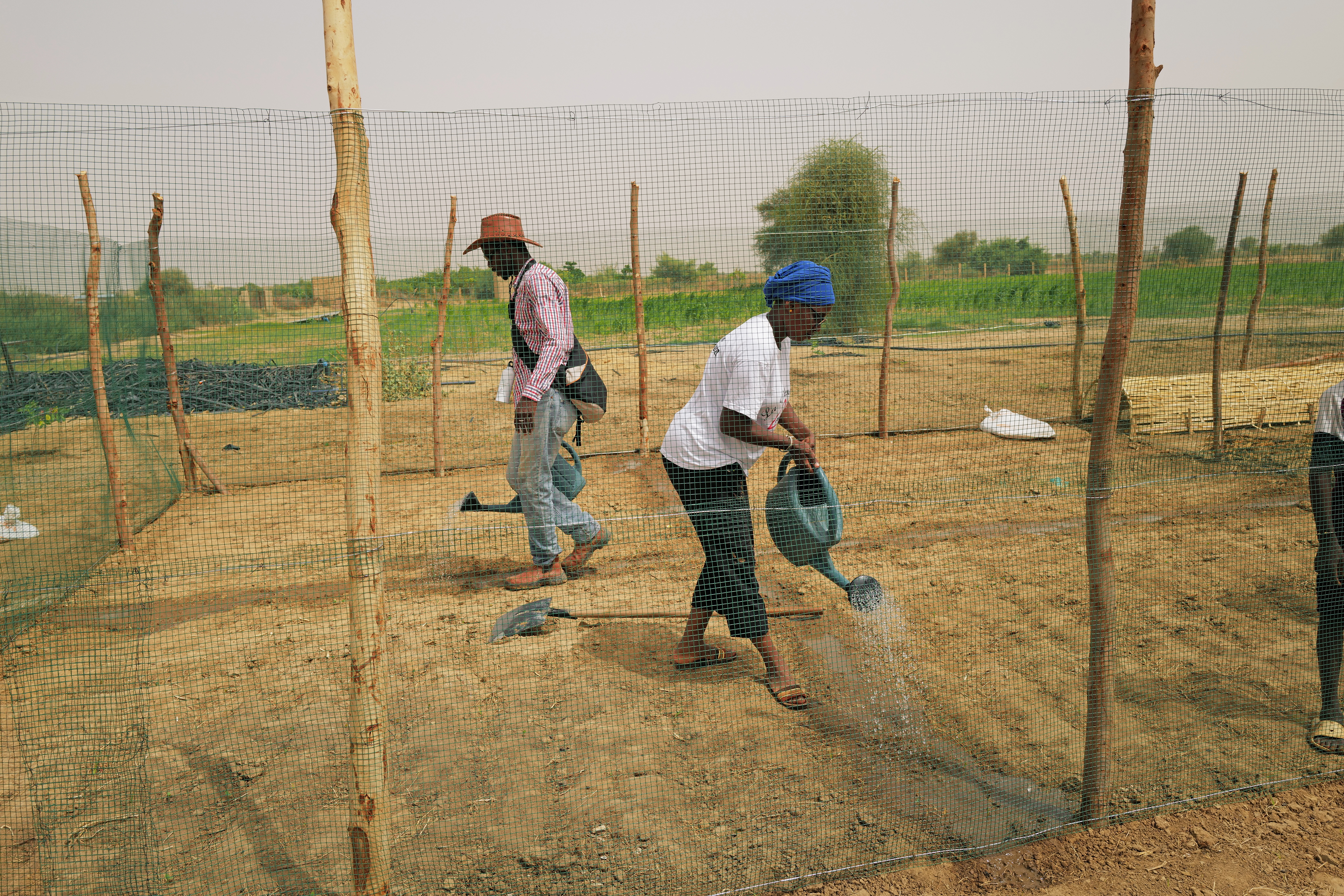 Amadou Bathili, 50, a trainer who teaches how to build Tolou Keur gardens through the Tolou Keur programme, prepares a chicken cage at a newly built Tolou Keur garden in Boki Diawe department of Podor region, in an area which is part of the Great Green Wall of the Sahara and the Sahel area, in Senegal, July 10, 2021. Gardens known as 'Tolou Keur' hold plants and trees resistant to hot, dry climates, and are planted with circular beds that allow roots to grow inwards, trapping liquids and bacteria and improving water retention and composting. REUTERS/Zohra Bensemra