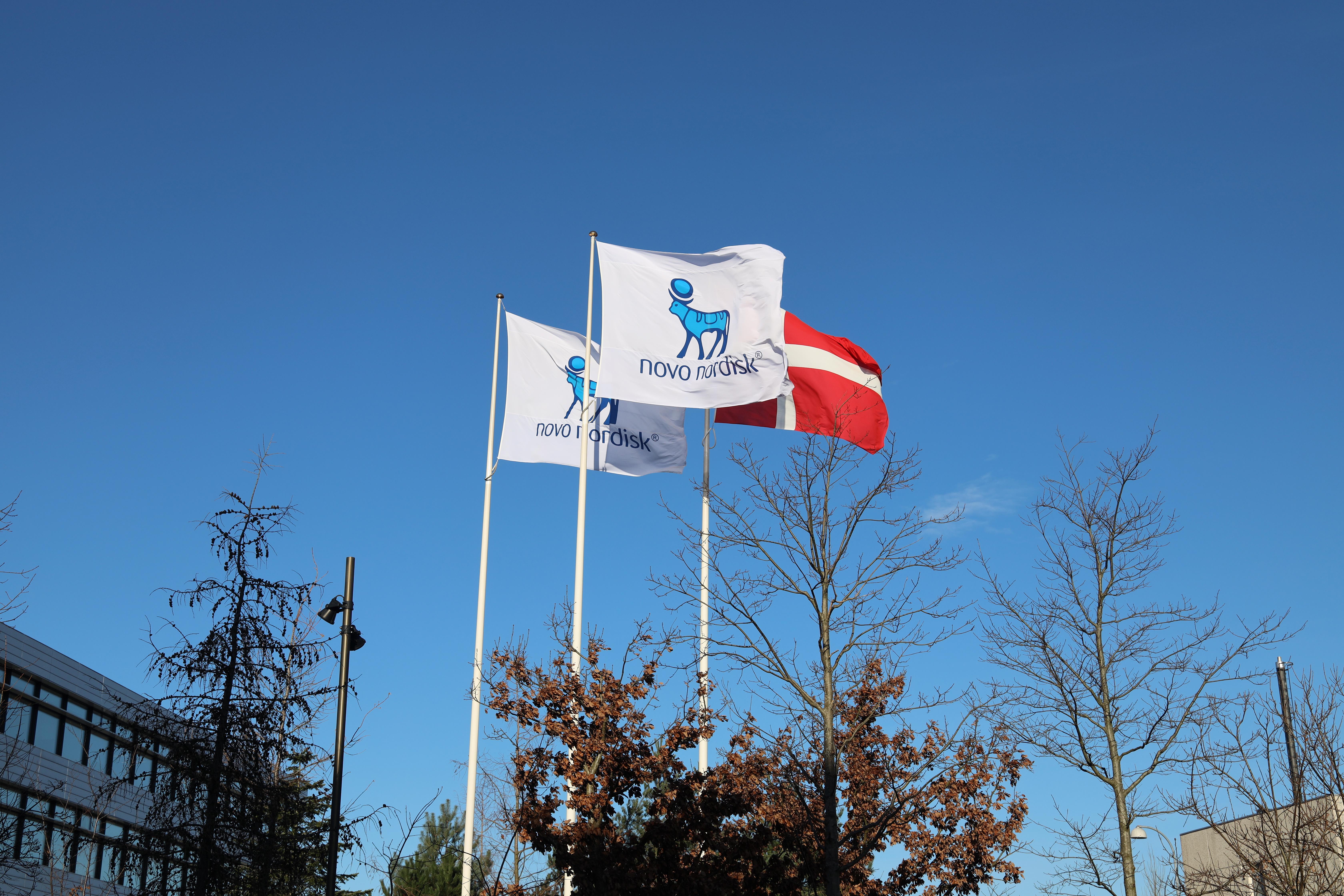 Flags are seen outside Novo Nordisk headquarters in Copenhagen, Denmark, February 5, 2020. REUTERS/Jacob Gronholt-Pedersen/Files