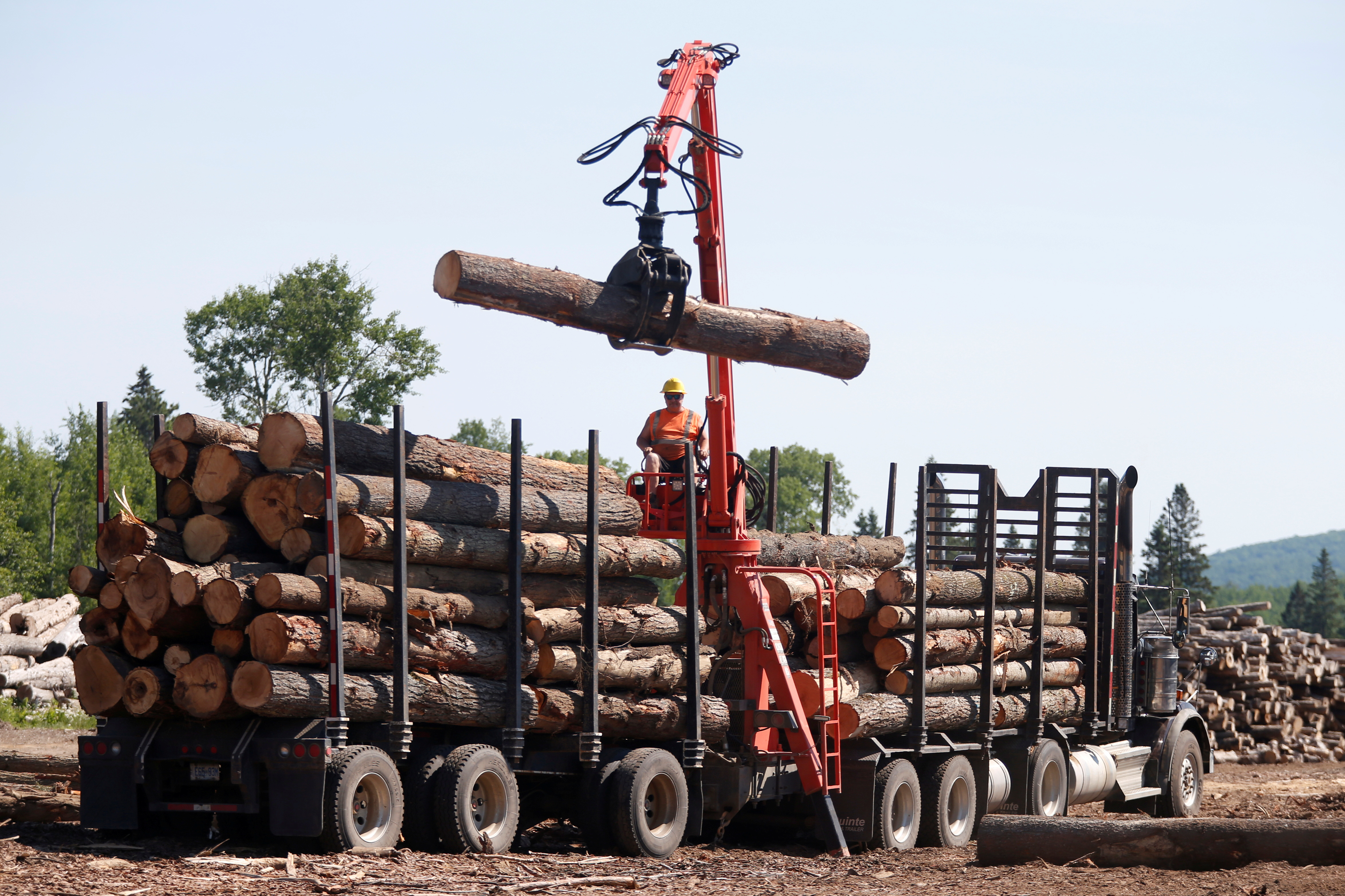 A worker unloads logs at the Murray Brothers Lumber Company in Madawaska, Ontario, Canada, July 4, 2018. REUTERS/Chris Wattie