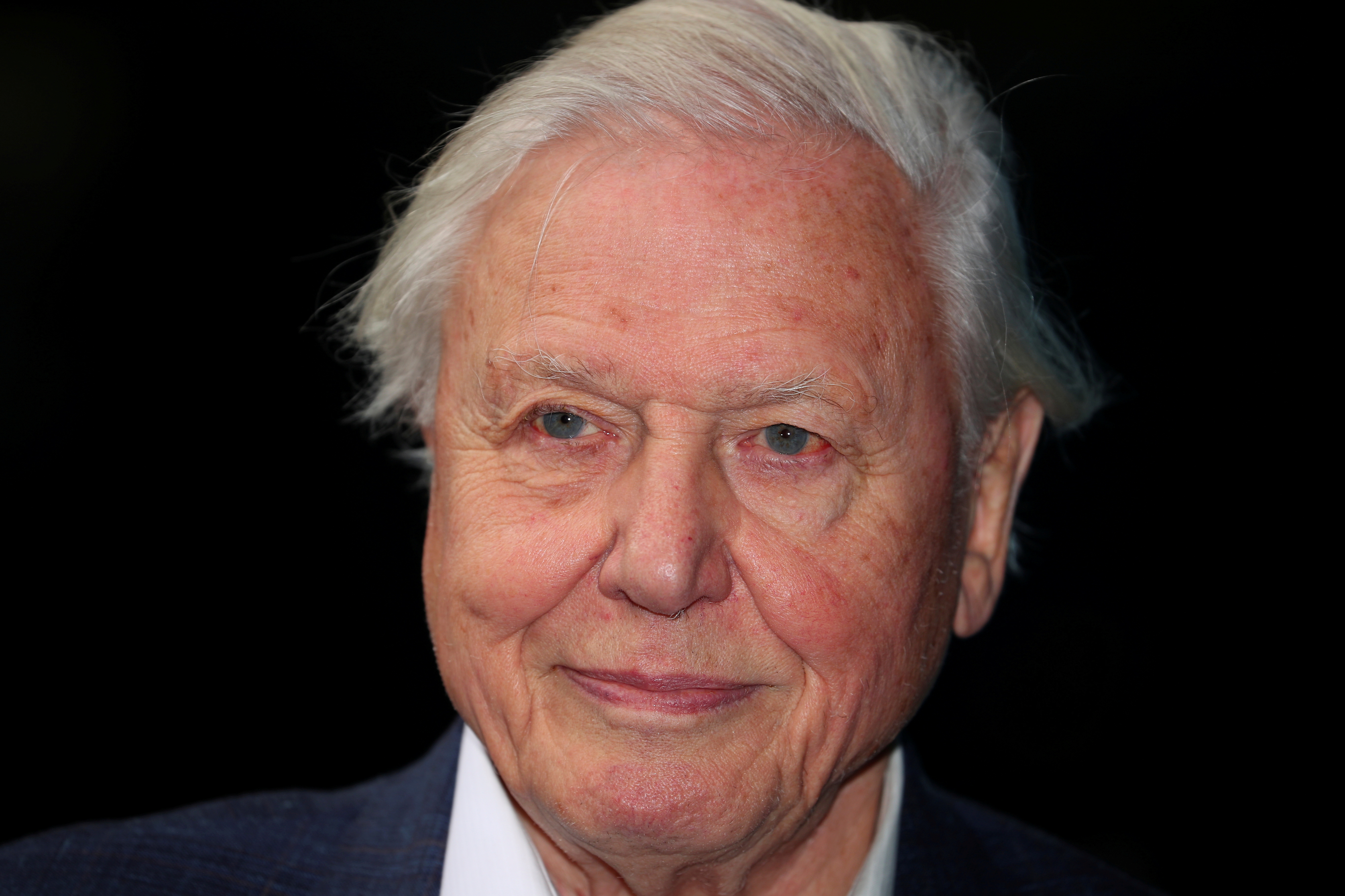 Broadcaster and film maker David Attenborough attends the premiere of Blue Planet II at the British Film Institute in London, Britain, September 27, 2017. REUTERS/Hannah McKay/File Photo