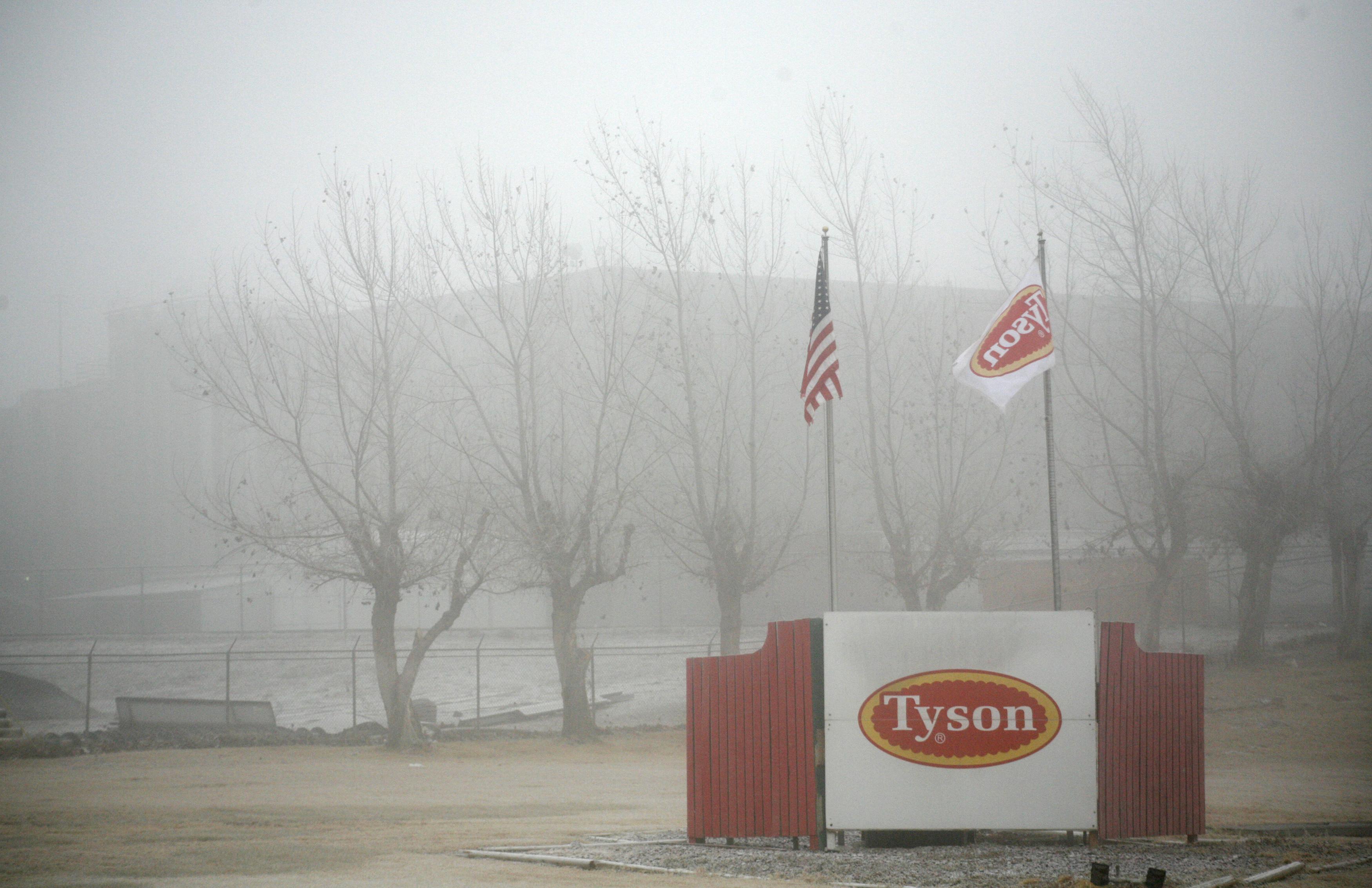 Fog shrouds the Tyson slaughterhouse in Burbank, Washington December 26, 2013. Picture taken December 26, 2013.   REUTERS/Ross Courtney