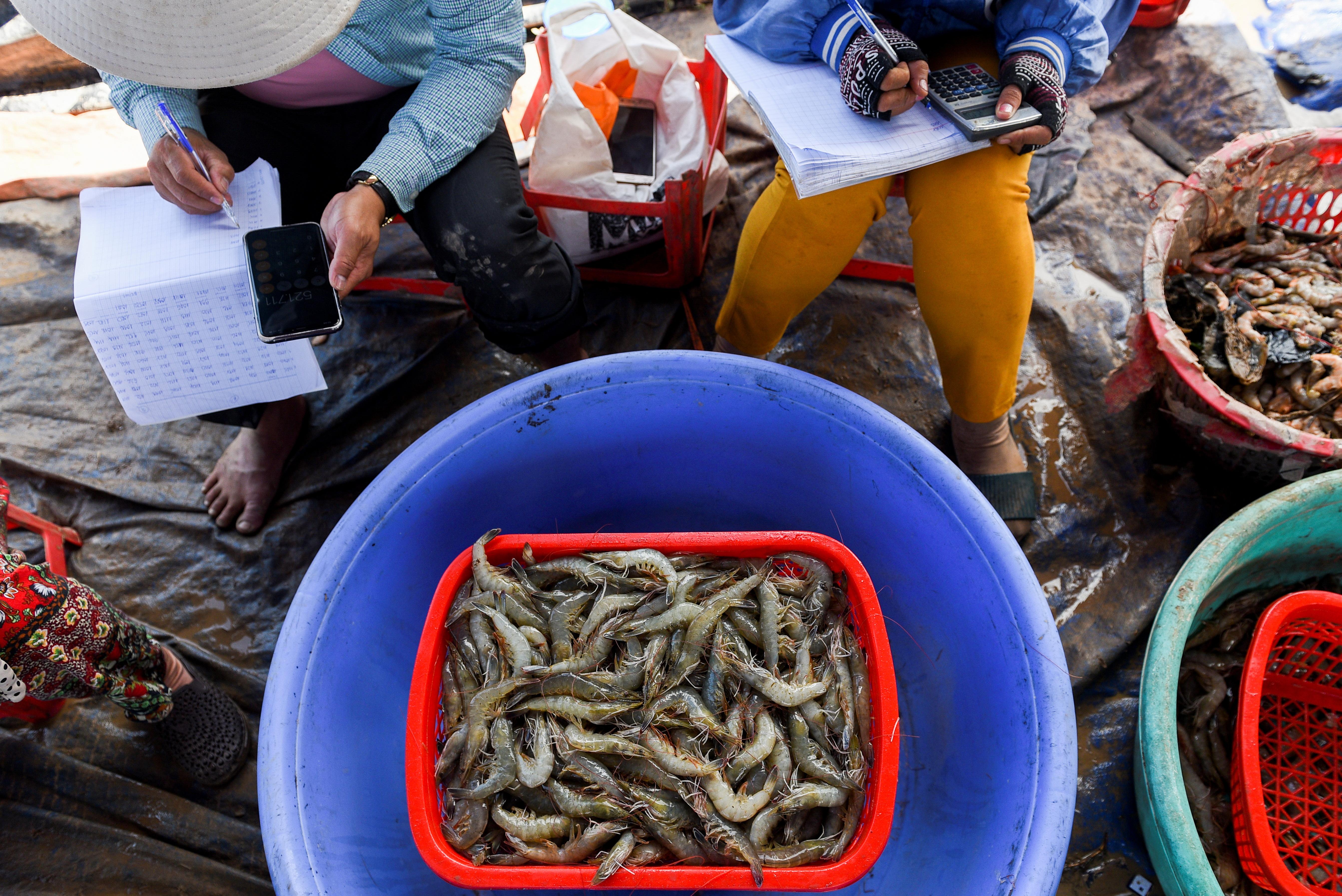 Shrimp farmers weigh harvested shrimps in Soc Trang province, Vietnam, April 27, 2021.  REUTERS/Thanh Hue