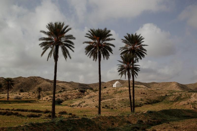 A shrine stands near troglodyte houses on the outskirts of Matmata, Tunisia, February 4, 2018. REUTERS/Zohra Bensemra