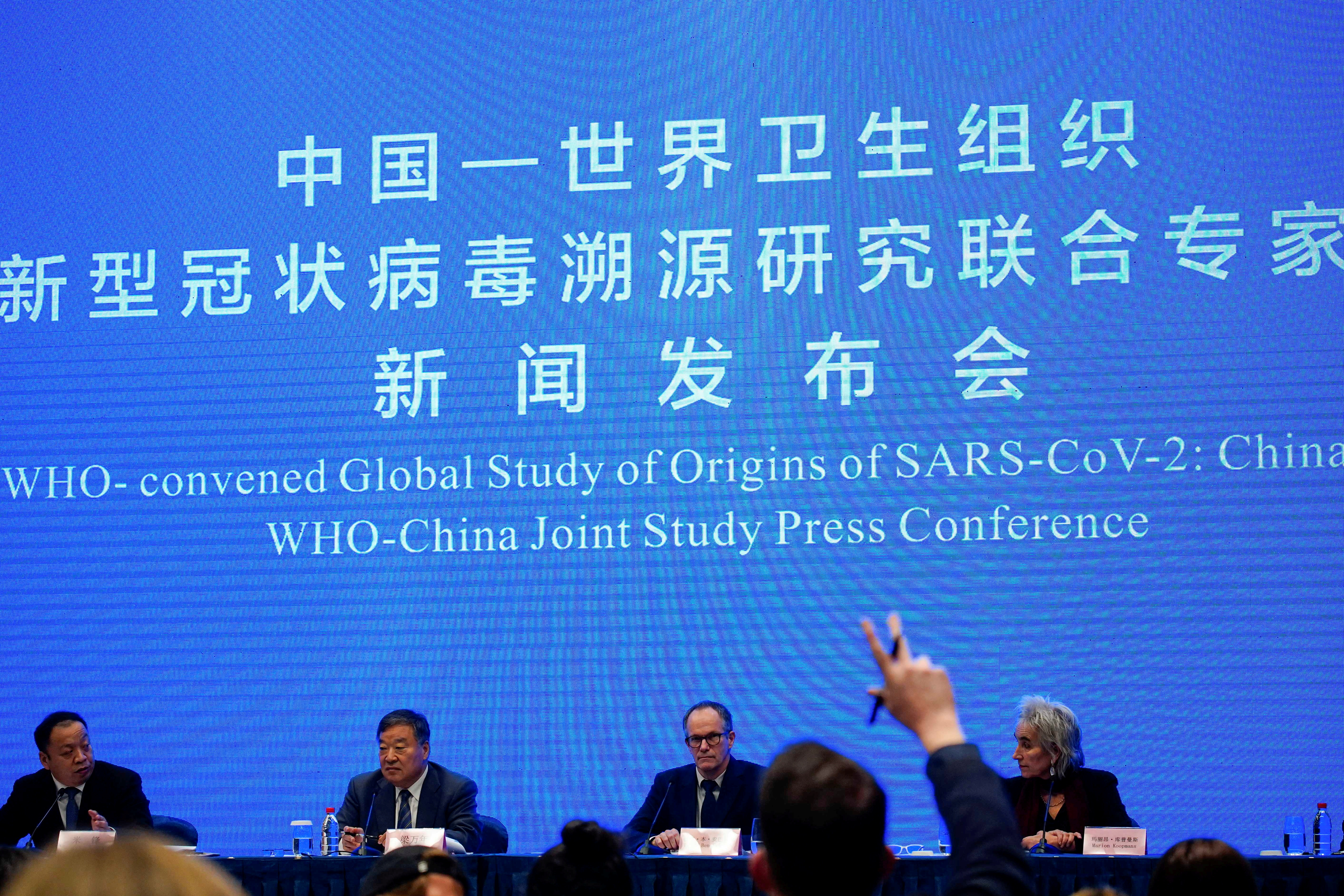 Peter Ben Embarek, a member of the World Health Organization (WHO) team tasked with investigating the origins of the coronavirus disease (COVID-19), attends the WHO-China joint study news conference at a hotel in Wuhan, Hubei province, China February 9, 2021. REUTERS/Aly Song/File Photo