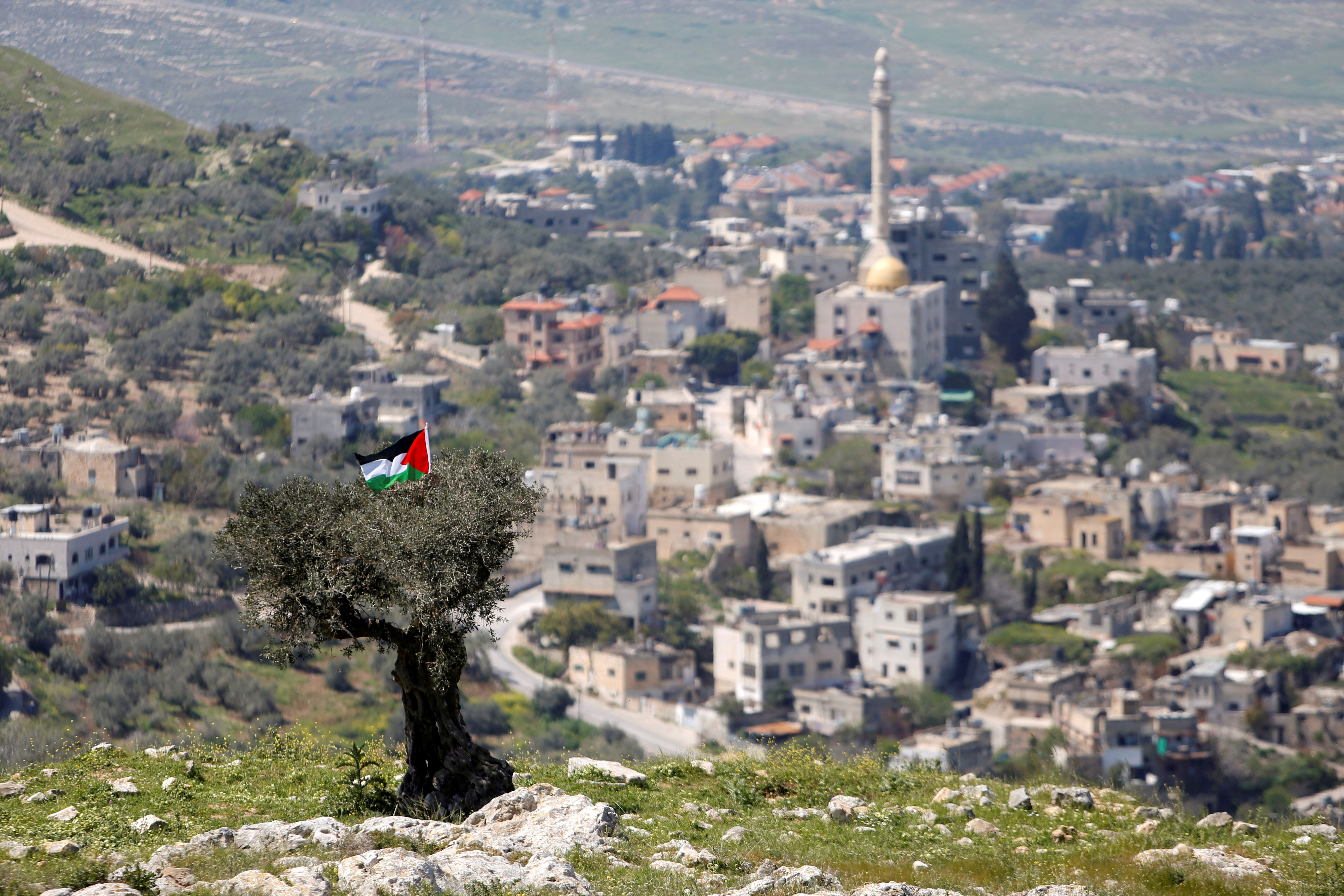 A Palestinian flag hangs on a tree during a protest against Jewish settlements in An-Naqura village near Nablus, in the Israeli-occupied West Bank March 29, 2021. REUTERS/Raneen Sawafta /File Photo