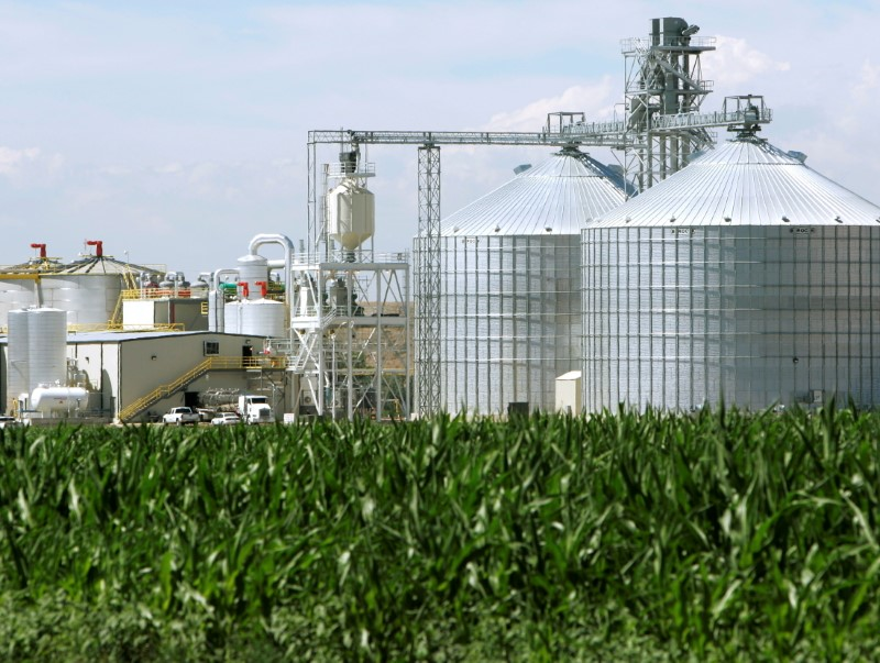 An ethanol plant with its giant corn silos next to a cornfield in Windsor, Colorado July 7, 2006.