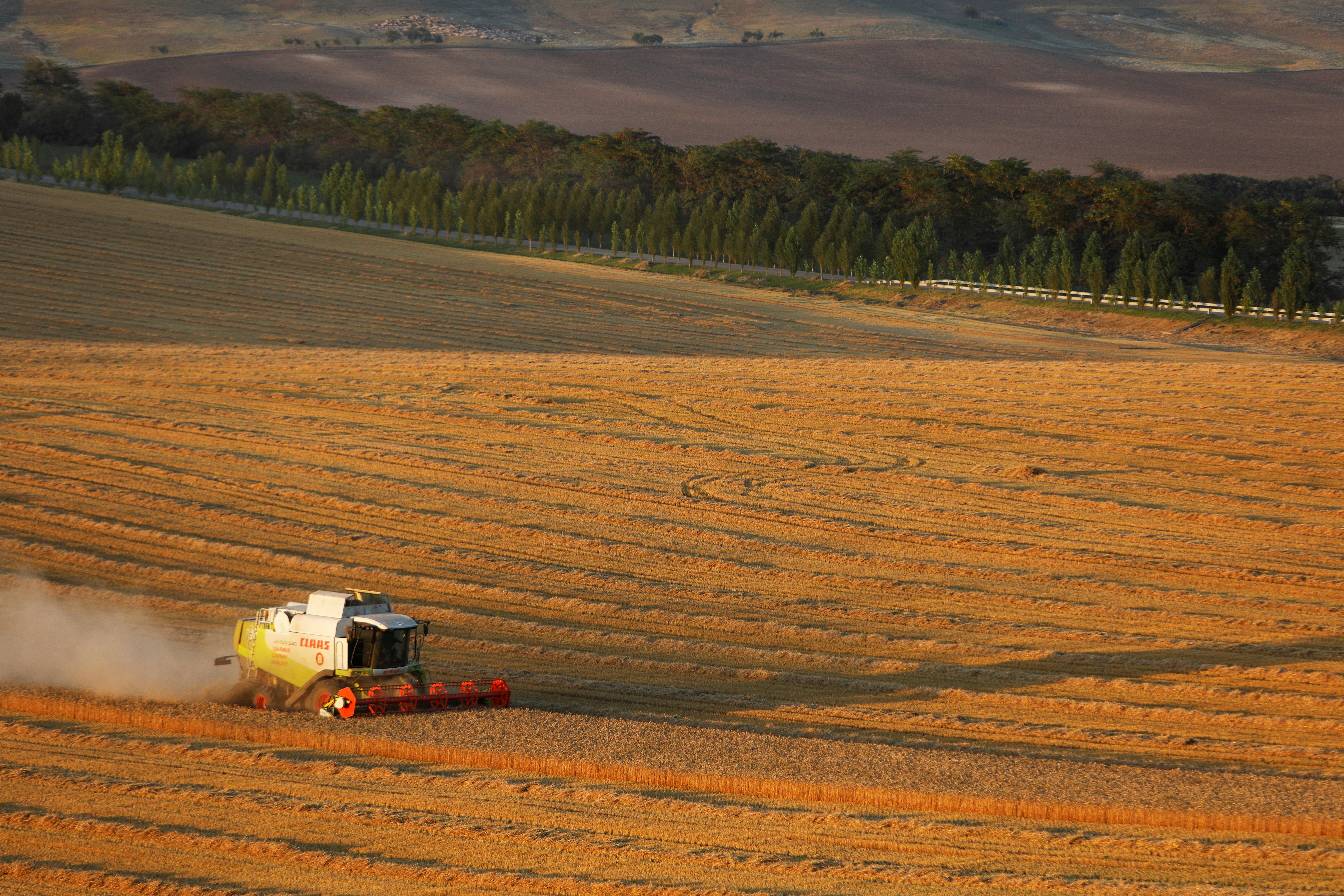 コンバインは、17年2021月XNUMX日、ロシアのスタヴロポリ地方のスヴォロフスカヤ村近くの畑で小麦を収穫します。REUTERS/ Eduard Korniyenko