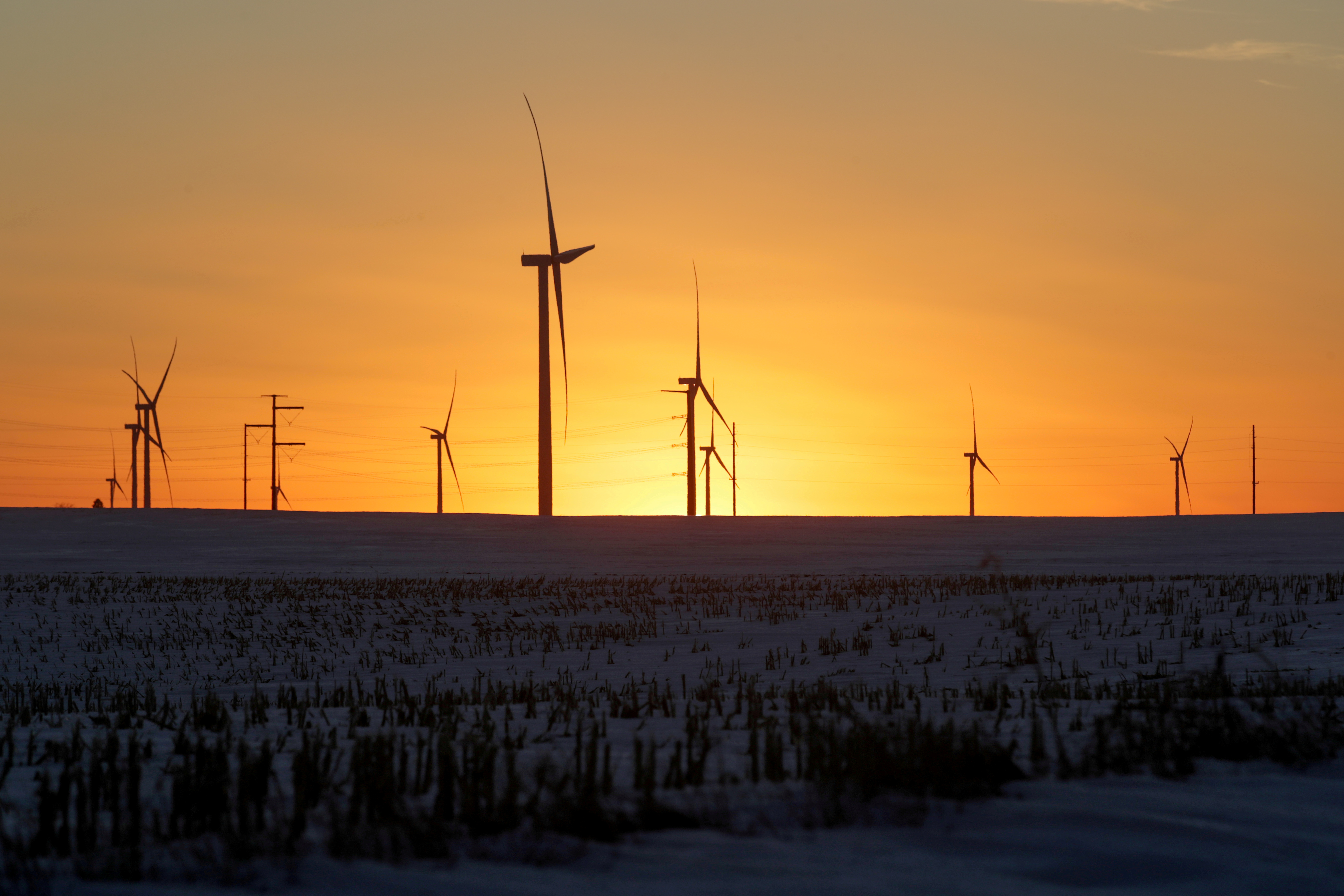 A wind farm shares space with corn fields the day in Latimer, Iowa, U.S. February 2, 2020. REUTERS/Jonathan Ernst