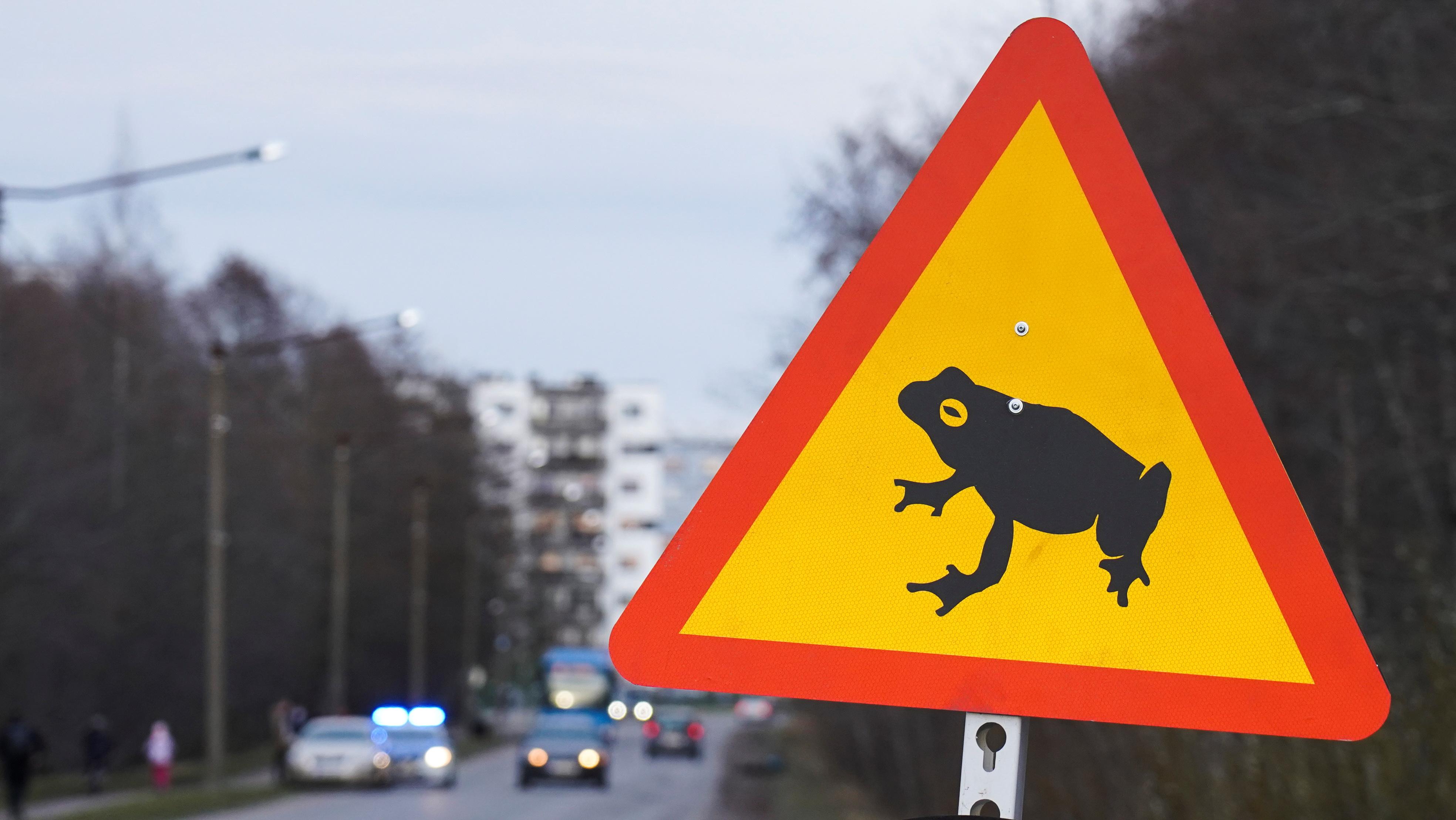 Una señal de tráfico que representa una rana se ve en un tramo de carretera cerrado en Tallin, Estonia, el 13 de abril de 2021. REUTERS / Janis Laizans