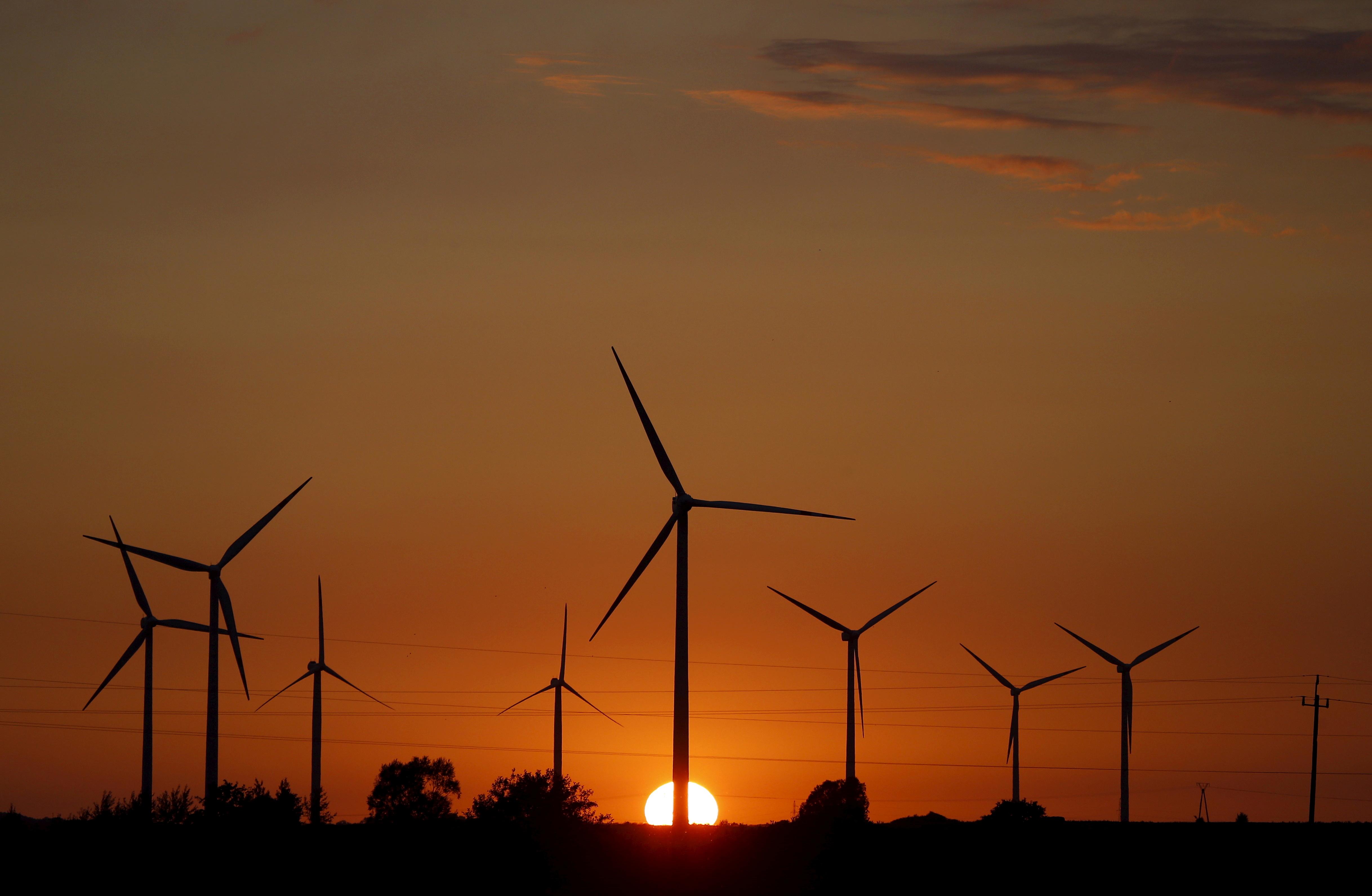 A sunset is seen through a wind farm near Puck, northern Poland, July 22, 2015. REUTERS/Kacper Pempel