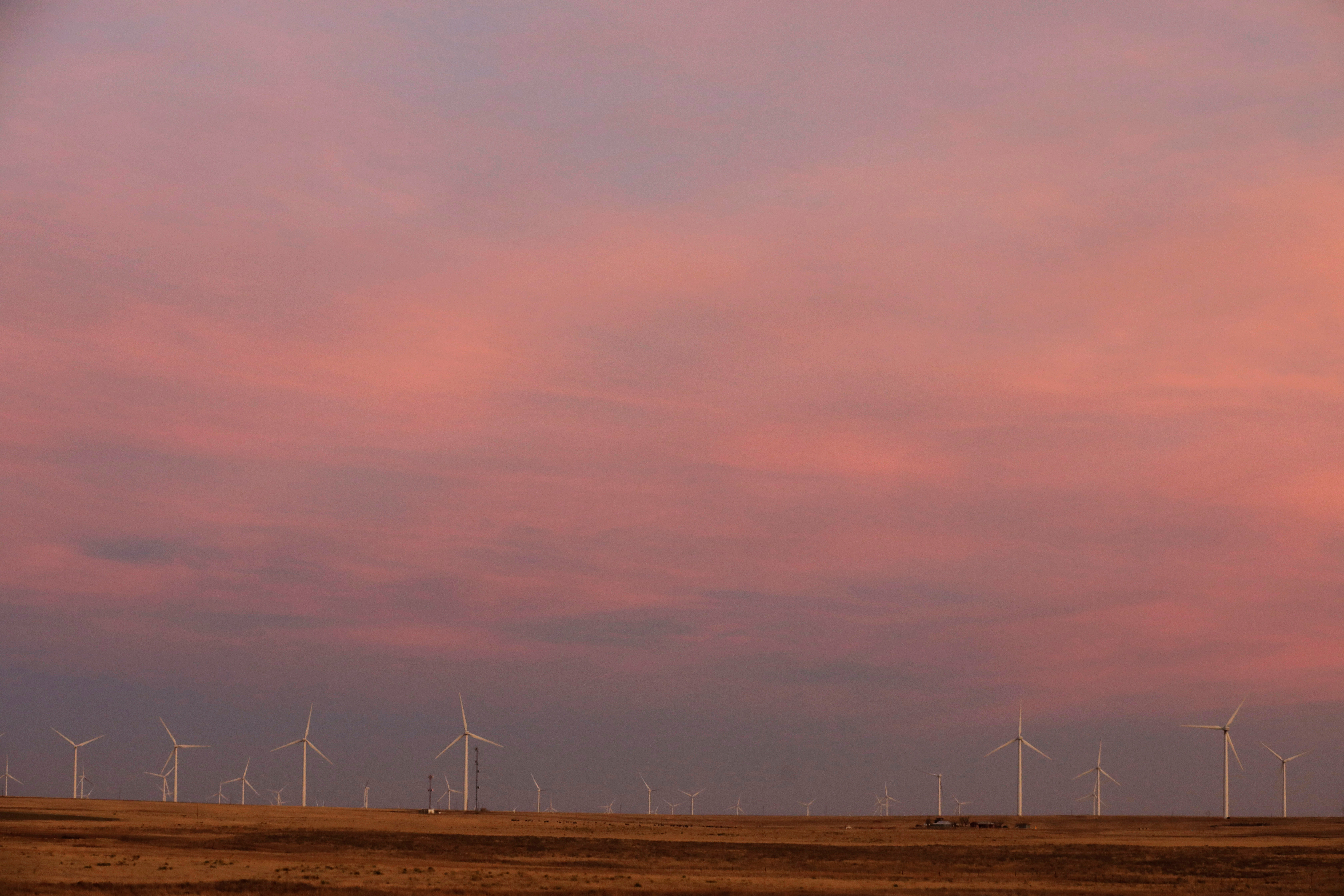Wind turbines stand above the plains north of Amarillo, Texas, U.S., March 14, 2017. REUTERS/Lucas Jackson