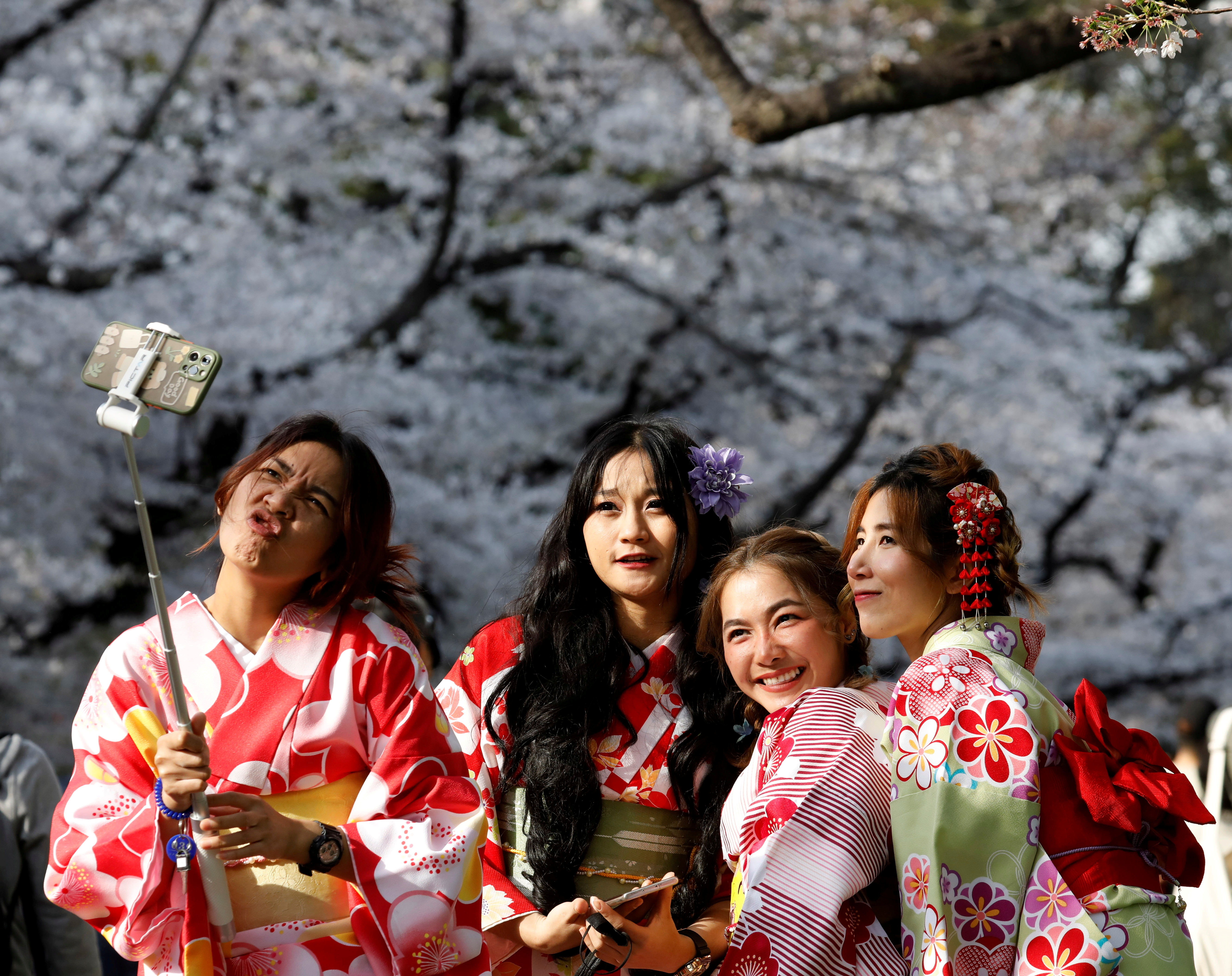 Kimono-clad women from Thailand take selfies among blooming cherry blossoms at Ueno Park in Tokyo, Japan, March 27, 2021. REUTERS/Kim Kyung-Hoon/File Photo