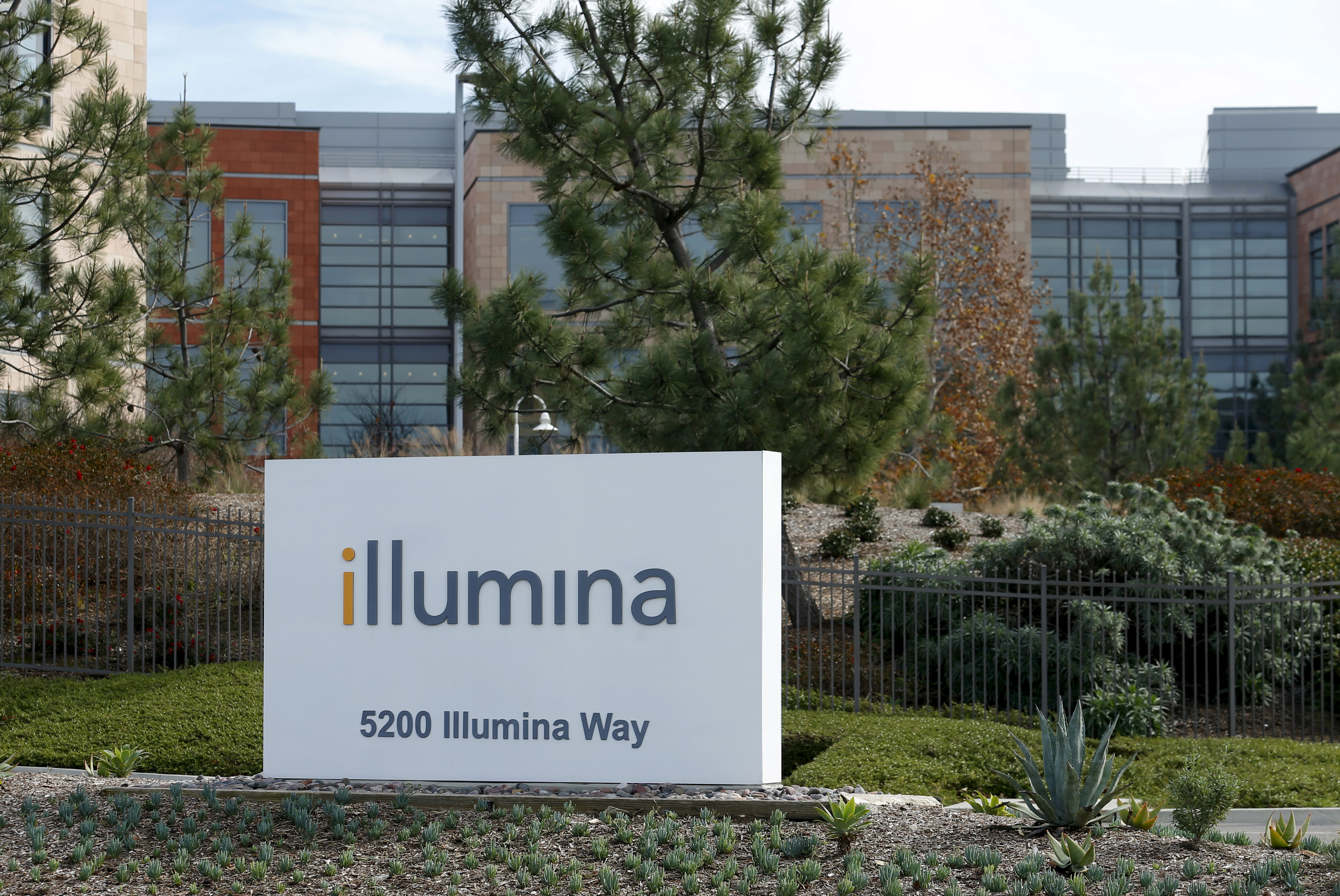 The offices of Illumina Inc in San Diego, California January 11, 2016.  REUTERS/Mike Blake