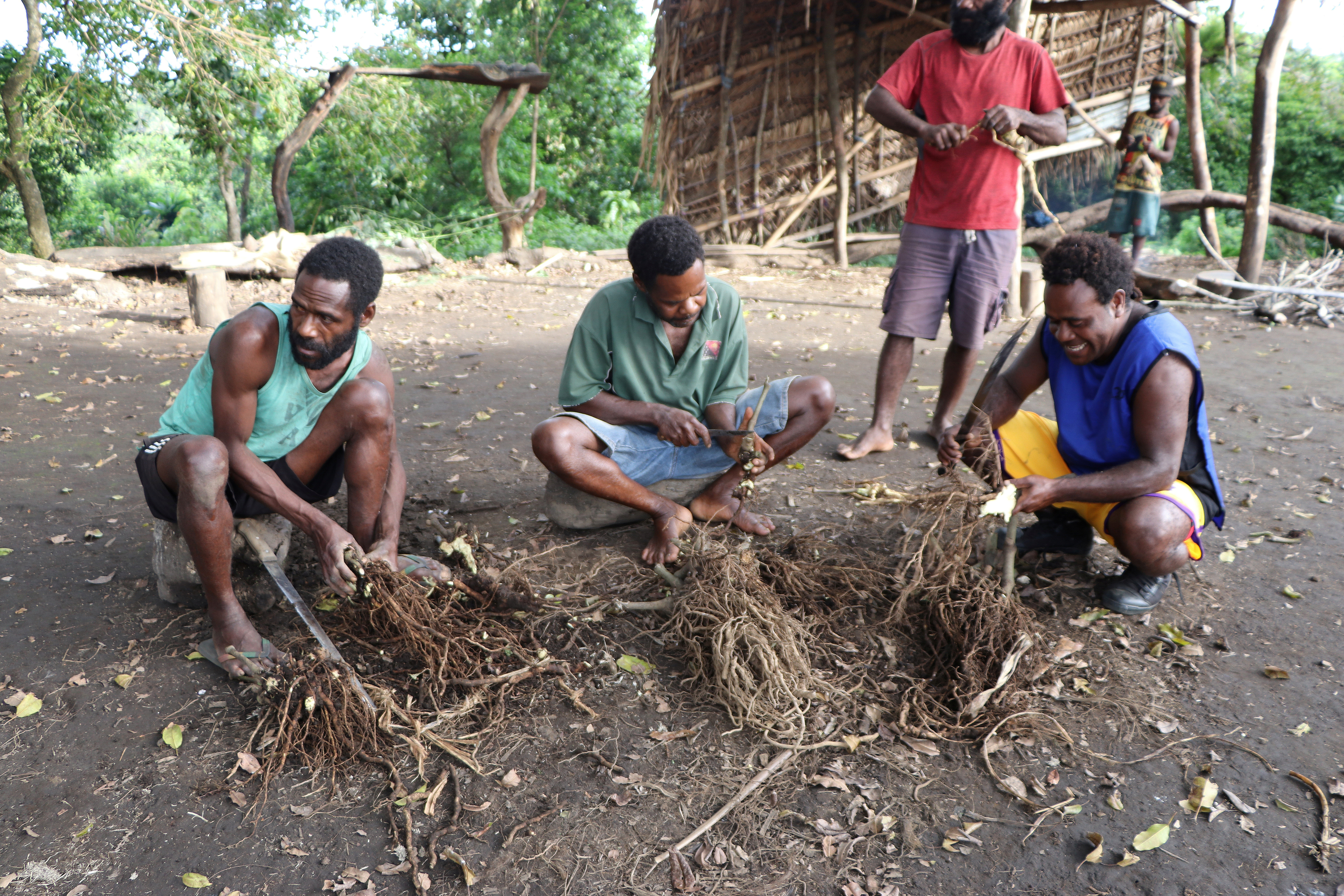 Prince Philip devotees prepare kava roots to be drunk at an upcoming mourning ceremony to take place for the late British prince who passed away Friday at age 99, in Younanen village, Tanna island, Vanuatu April 10, 2021. REUTERS/Jean-Pascal Wahe