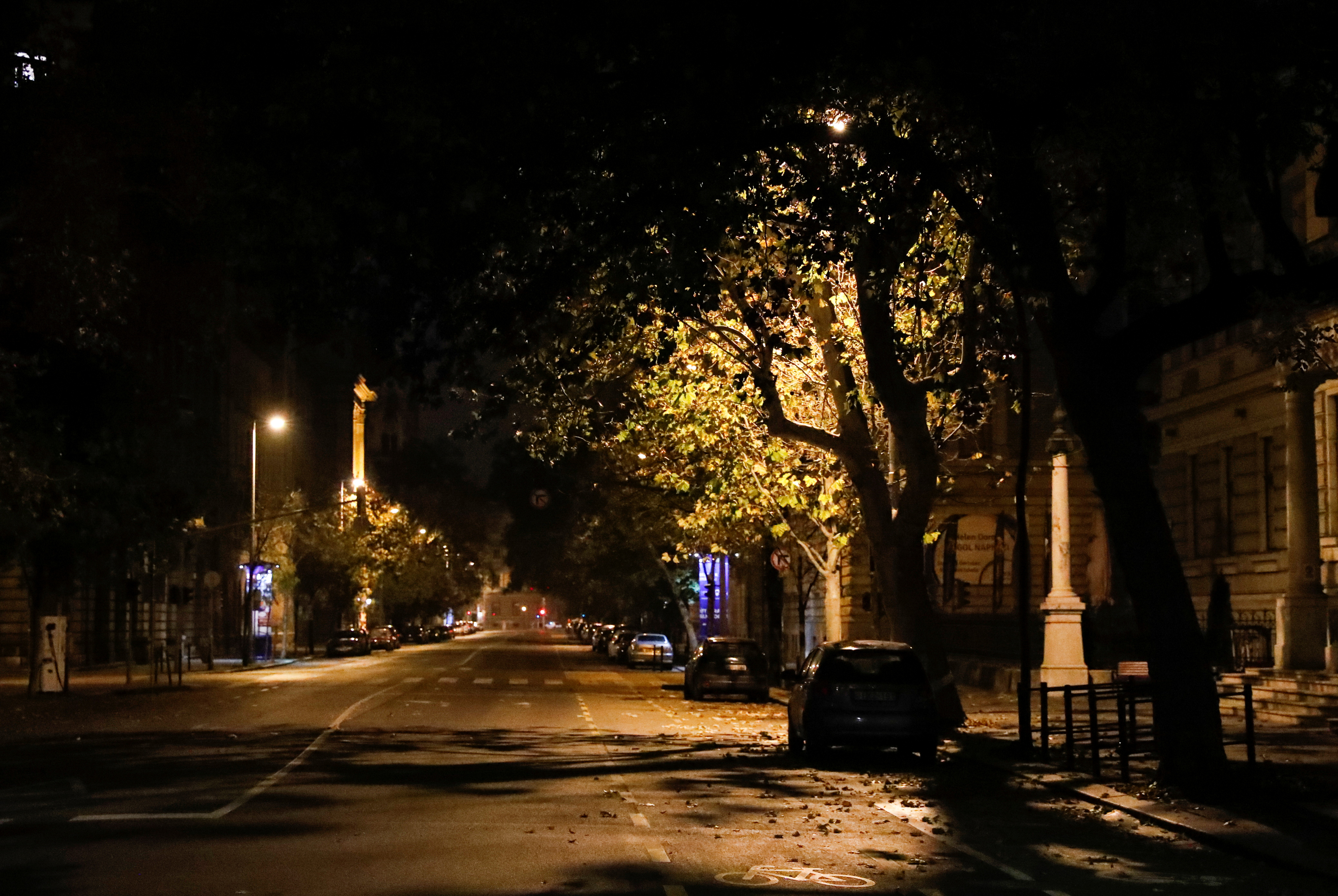 An empty street is seen during a night-time curfew imposed by the Hungarian government as the spread of the coronavirus disease ( COVID-19) continues, in Budapest, Hungary, November 11, 2020. REUTERS/Bernadett Szabo