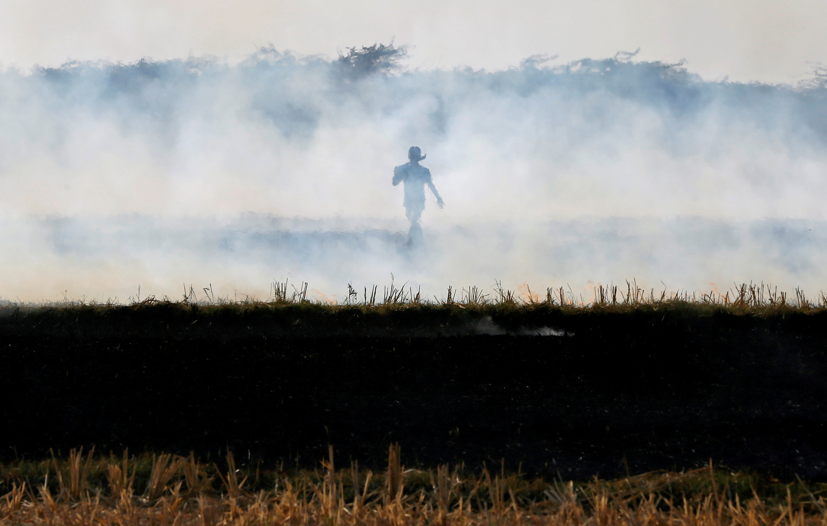 A farmer burns paddy waste stubble in a field on the outskirts of Ahmedabad, India November 15, 2017. REUTERS/Amit Dave     TPX IMAGES OF THE DAY/File Photo