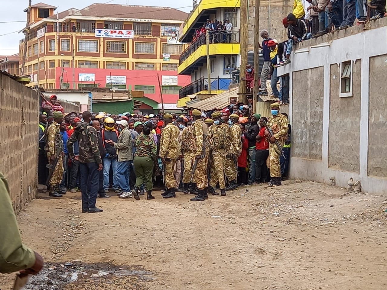 Kenyan wildlife rangers and veterinarians control the crowd of people who gathered to see the lion that had wandered into a residential area in Ongata Rongai, in the outskirts of Nairobi, Kenya July 28, 2021. Kenya Wildlife Service/Handout via REUTERS