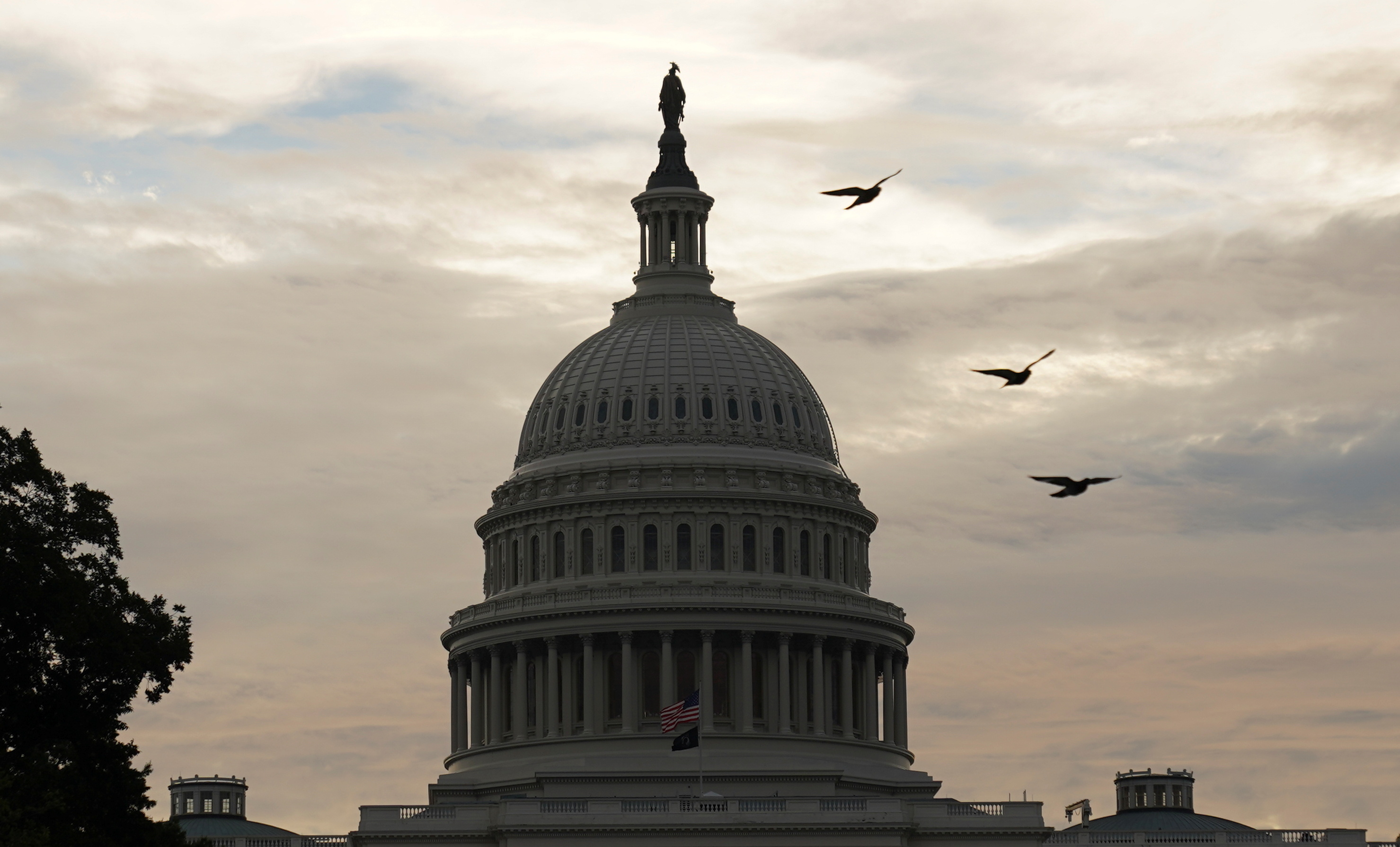Birds fly near the U.S. Capitol days after Democratic leaders of the U.S. House of Representatives delayed a planned vote on a $1 trillion bipartisan infrastructure bill, in Washington, U.S., October 4, 2021. REUTERS/Kevin Lamarque