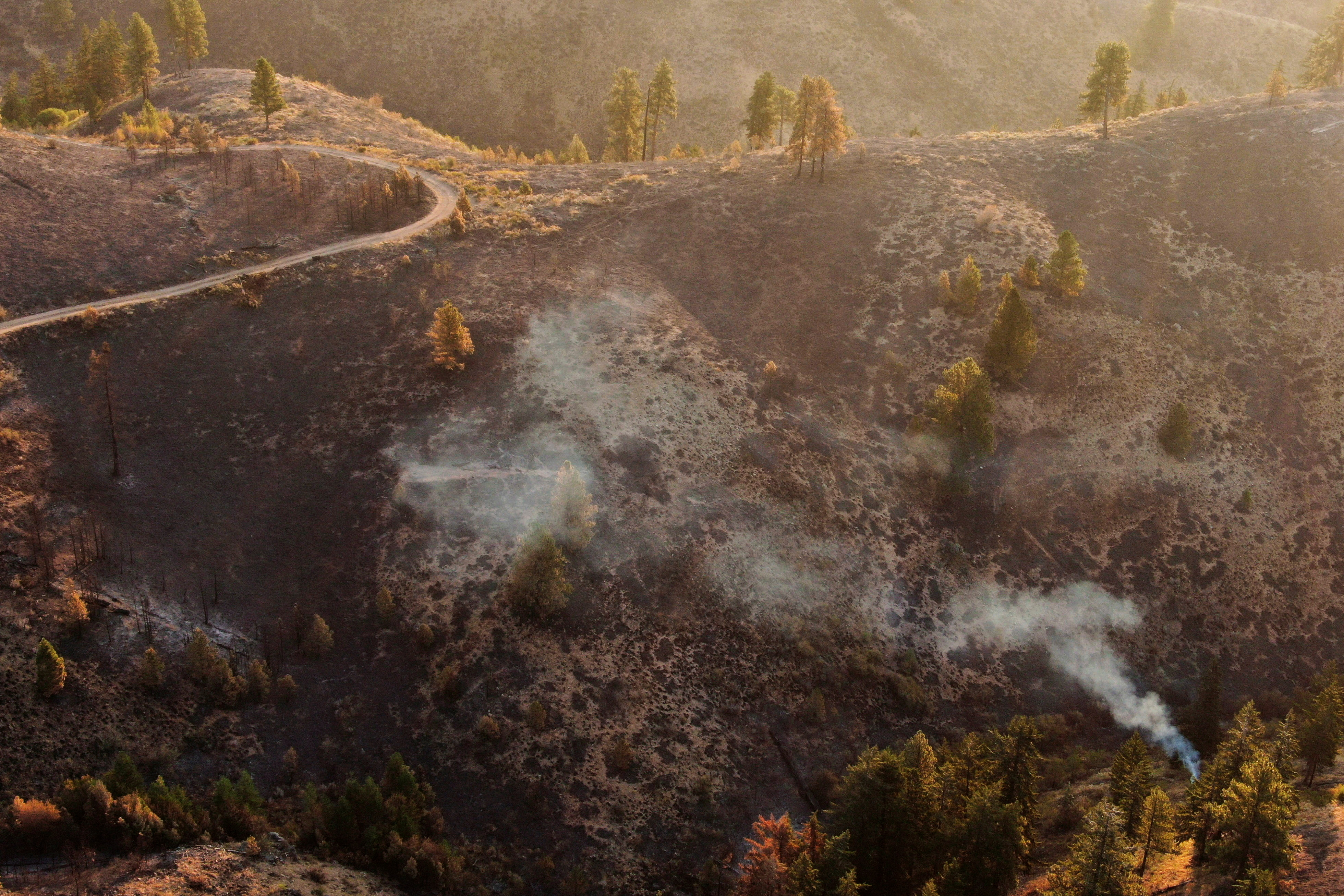 A view shows burned vegetation after the Red Apple Fire damaged the area near Wenatchee, Washington, U.S., July 24, 2021. Picture taken with a drone.  REUTERS/David Ryder