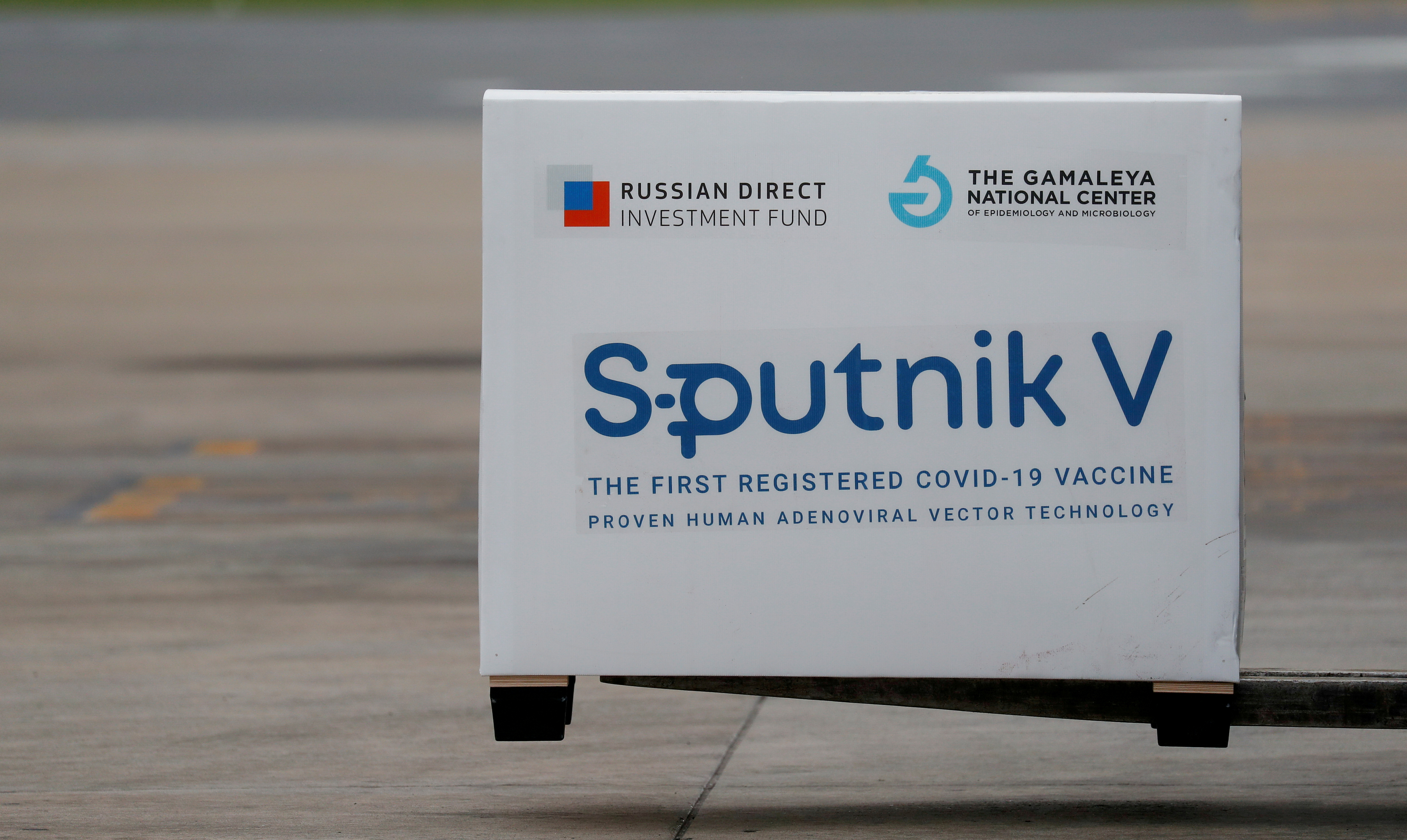 A shipment of doses of the Sputnik V (Gam-COVID-Vac) vaccine against the coronavirus disease (COVID-19) is seen after arriving at Ezeiza International Airport, in Buenos Aires, Argentina, January 28, 2021. REUTERS/Agustin Marcarian