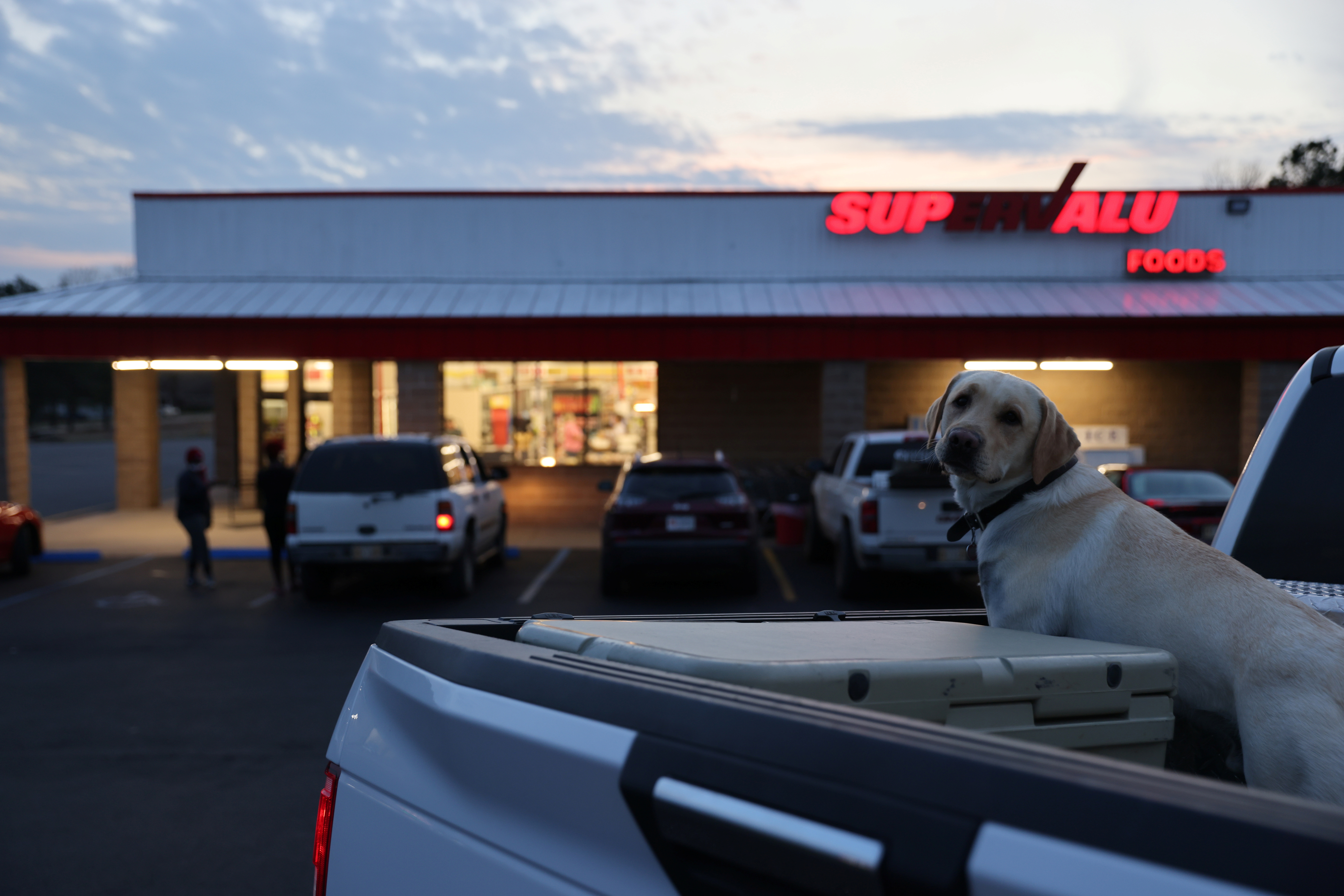 A dog waits for its owner outside the SuperValu grocery store in the small town of Ackerman, Mississippi, U.S. March 11, 2021. REUTERS/Jonathan Ernst