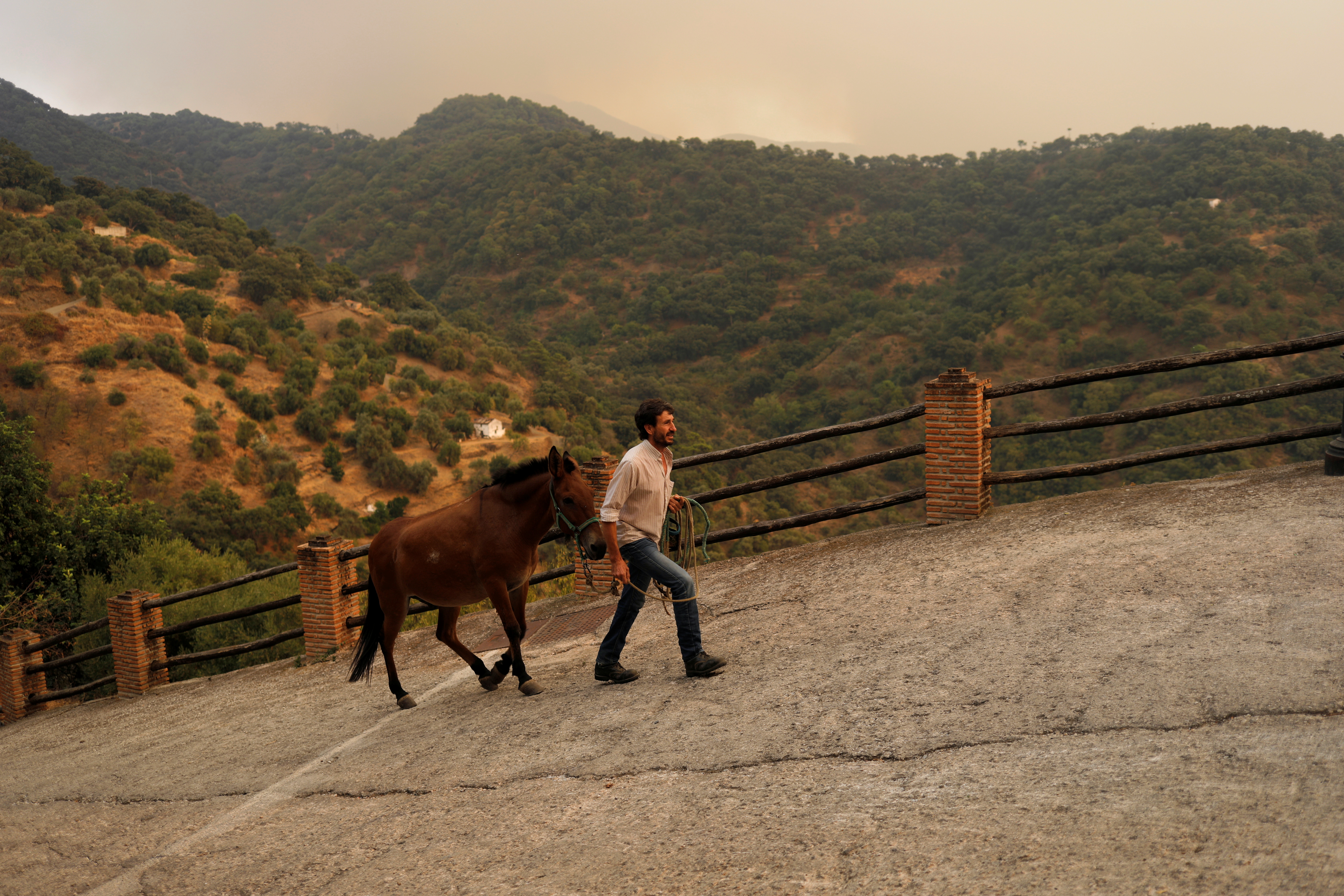 A man leads his horse from a field to a stable following an alert recommendation for residents to stay in their houses due to the smoke cloud from a wildfire on Sierra Bermeja mountain, in Genalguacil, near Estepona, Spain, September 11, 2021. REUTERS/Jon Nazca