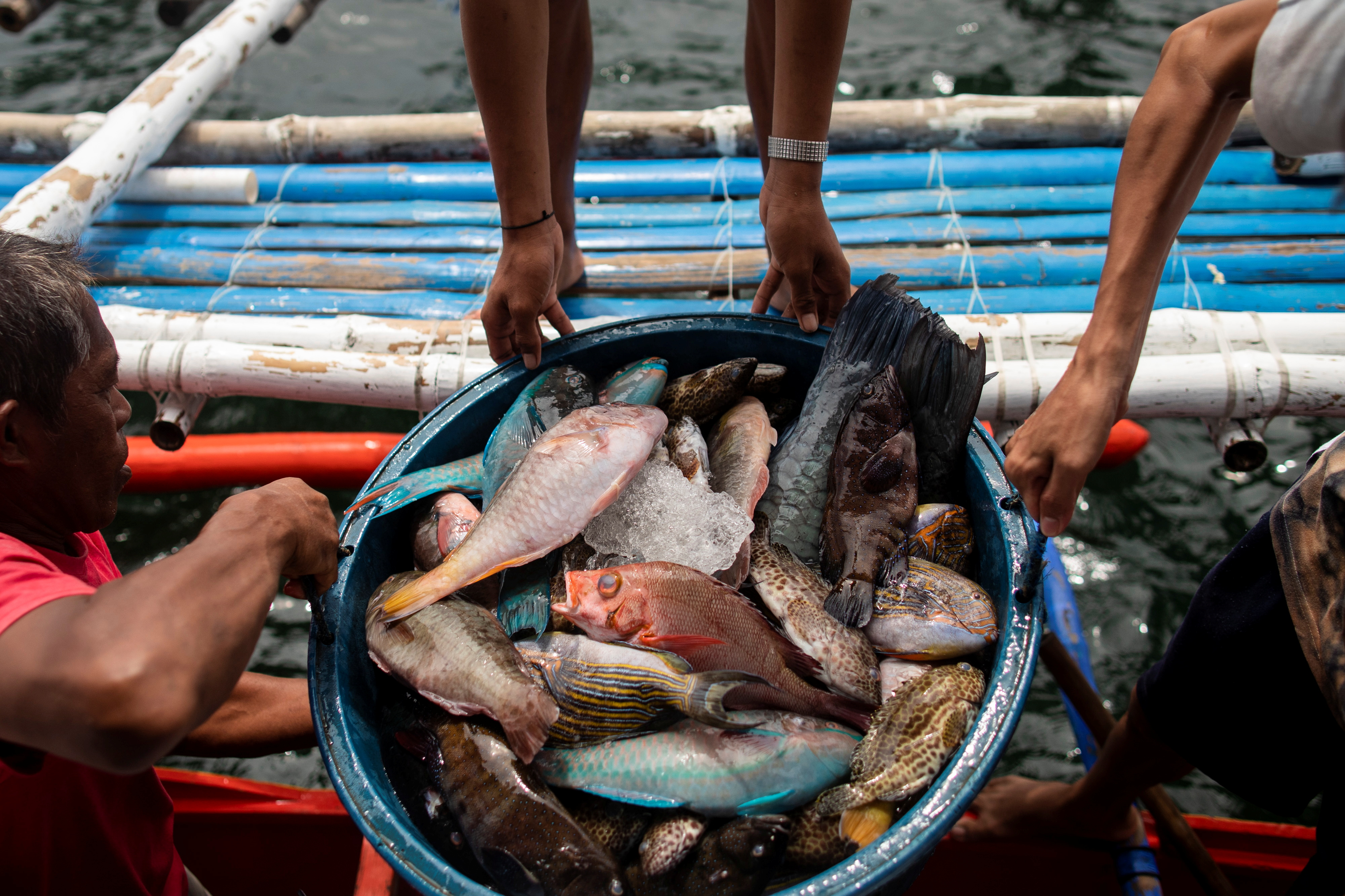 Filipino fishermen unload fish after arriving from a week-long trip to the disputed Scarborough Shoal, in Infanta, Pangasinan province, Philippines, July 6, 2021. Picture taken July 6, 2021. REUTERS/Eloisa Lopez