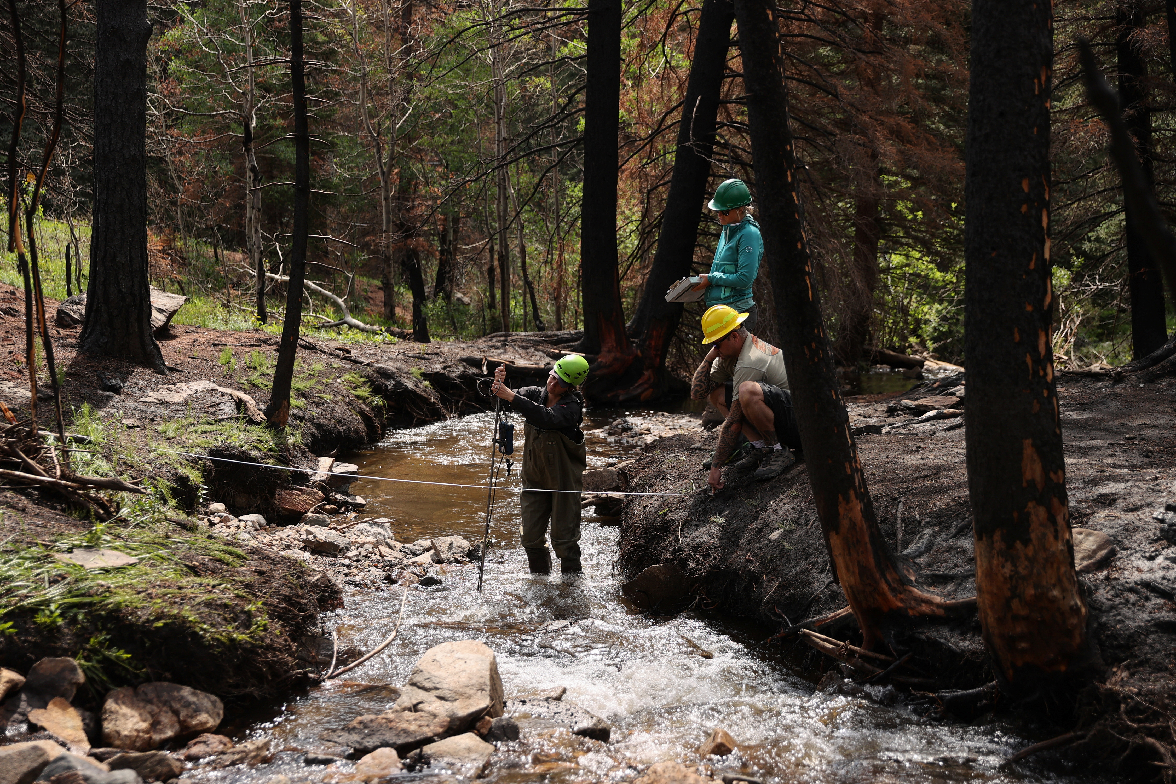 Katie Willi, Megan Sears and Ian Lilya, all with the United States Forest Service, collect water quality data along a tributary to the Poudre River inside the Cameron Peak fire burn scar west of Fort Collins, Colorado, U.S., June 29, 2021. Huge forest fires last year denuded vast areas of Colorado's mountains and left them covered in ash – ash that with sediment has since been washed by rains into the Cache la Poudre River. Picture taken June 29, 2021. REUTERS/Forrest Czarnecki