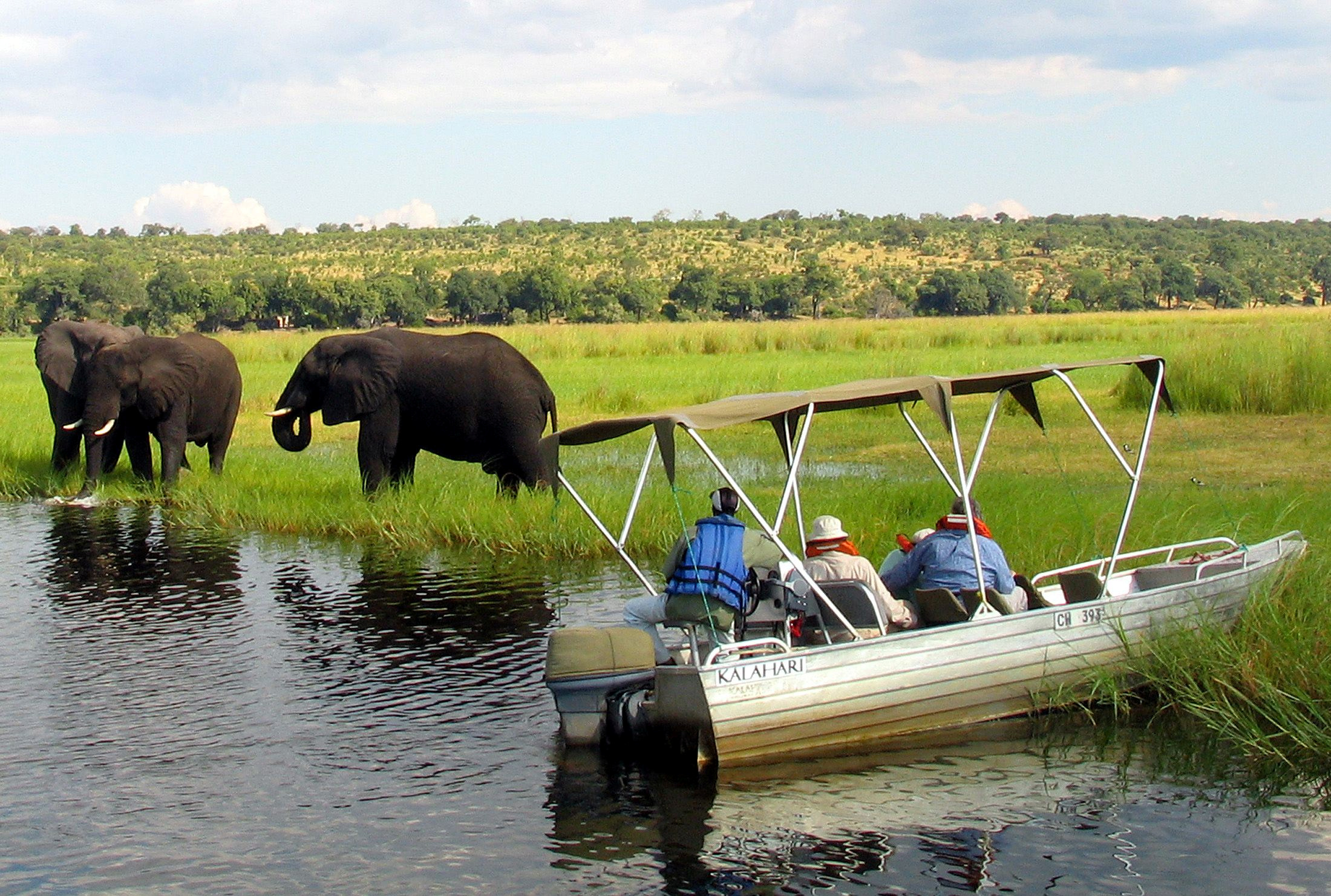 Foreign tourists in safari riverboats observe elephants along the Chobe river bank near Botswana's northern border where Zimbabwe, Zambia and Namibia meet,  file.  REUTERS/Peter Apps/File Photo
