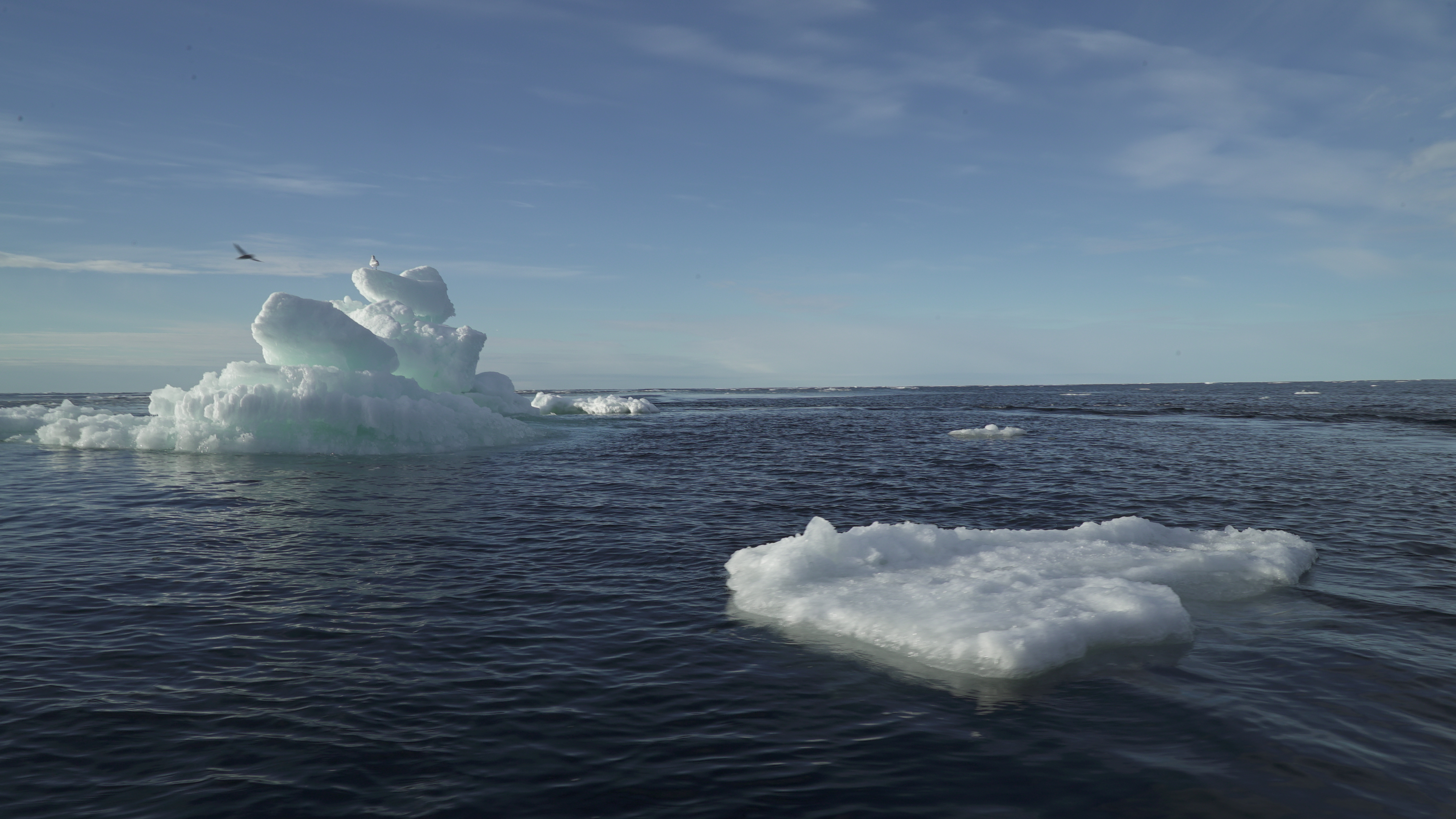 Floating ice is seen during the expedition of the The Greenpeace's Arctic Sunrise ship at the Arctic Ocean, September 14, 2020. REUTERS/Natalie Thomas